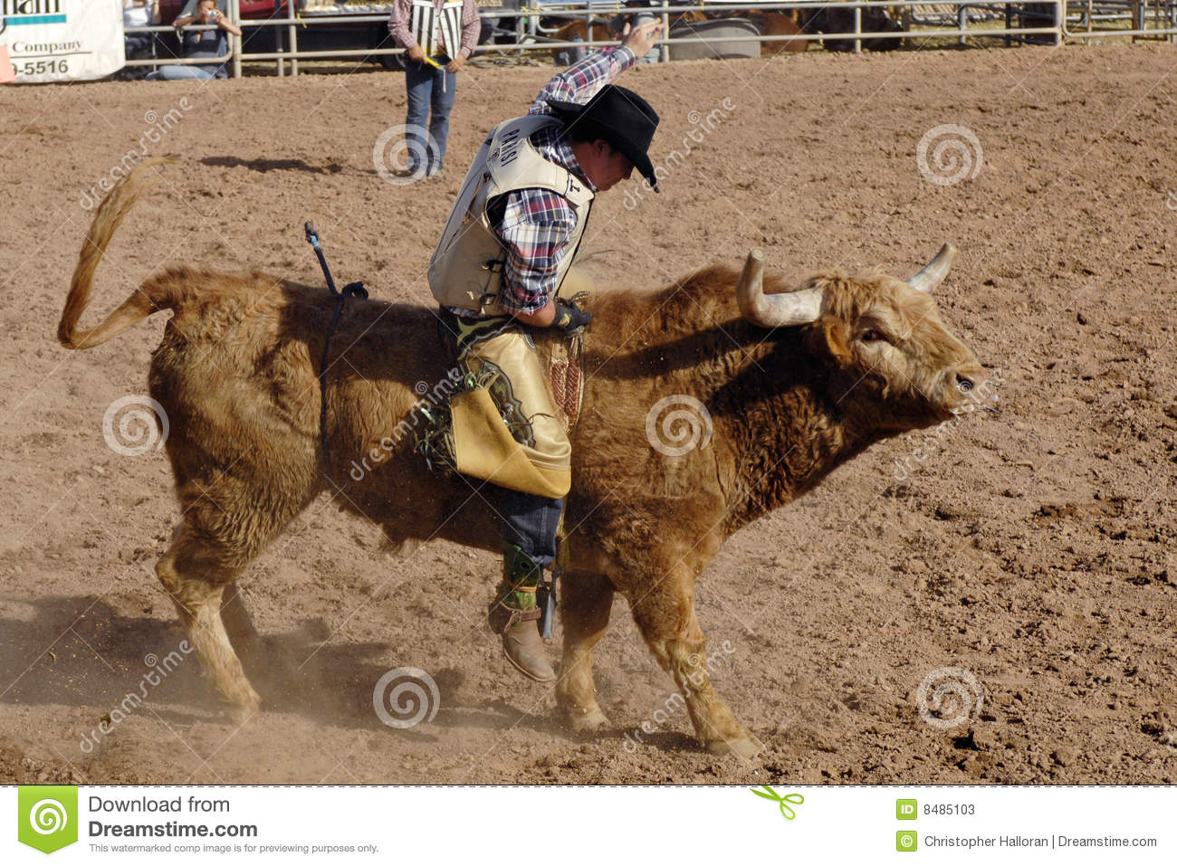 Lost Dutchman Days Rodeo Editorial Stock Photo Image