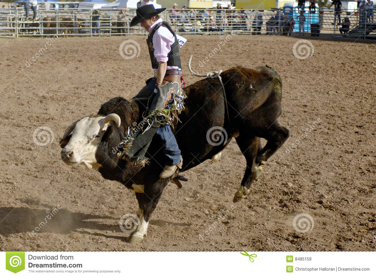 Lost Dutchman Days Rodeo Editorial Stock Image Image Of
