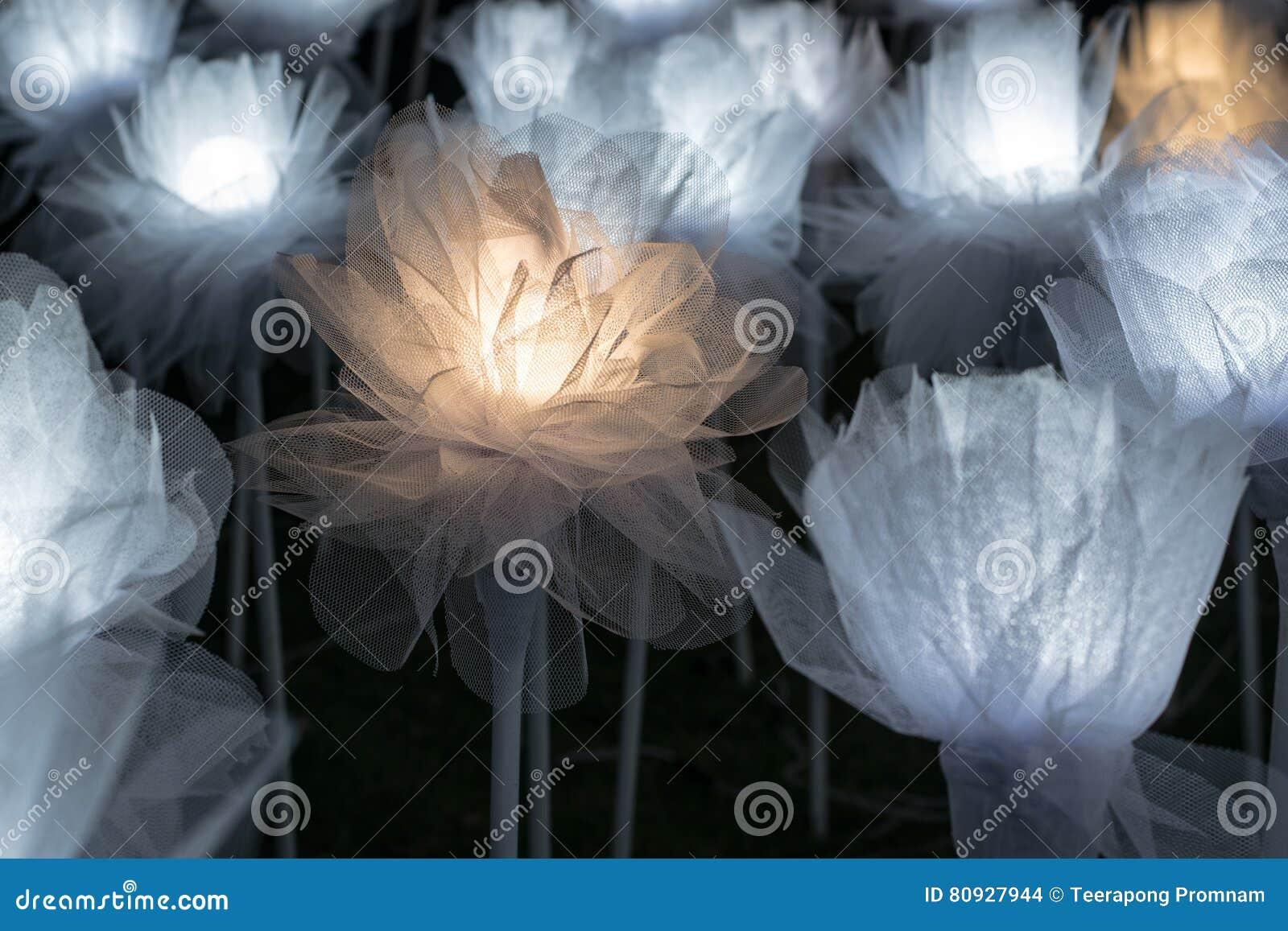 A Lot Of Lit LED Rose Flowers At The Dongdaemun Design Plaza In UD - Lit design a led