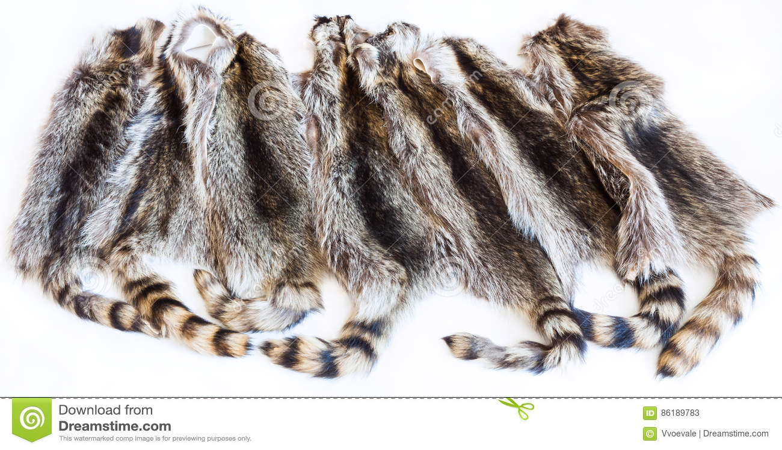 Lot of natural raccoon pelts