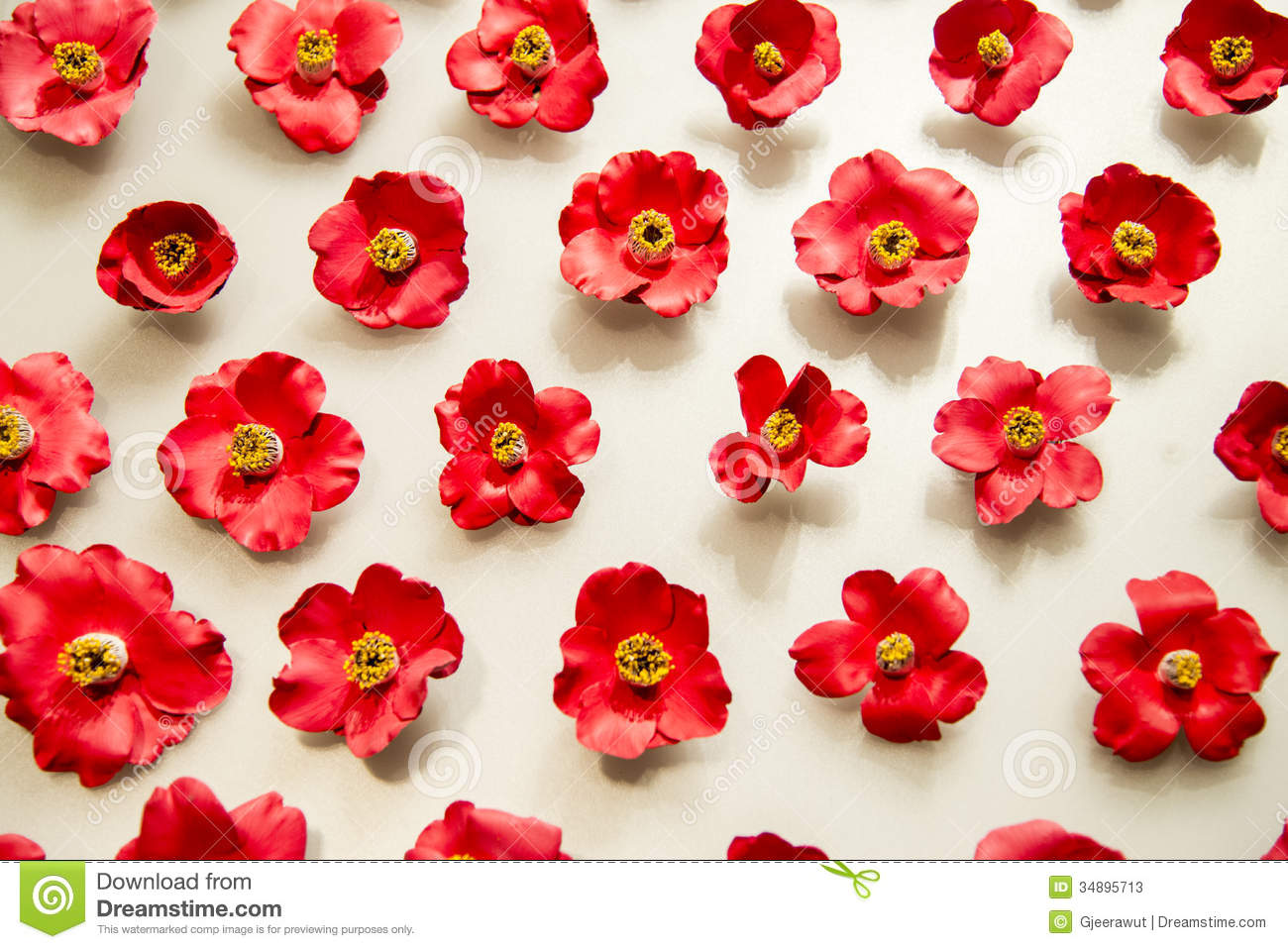 Lot Of Red Camellia Flowers On White Background Stock Photos - Image ...