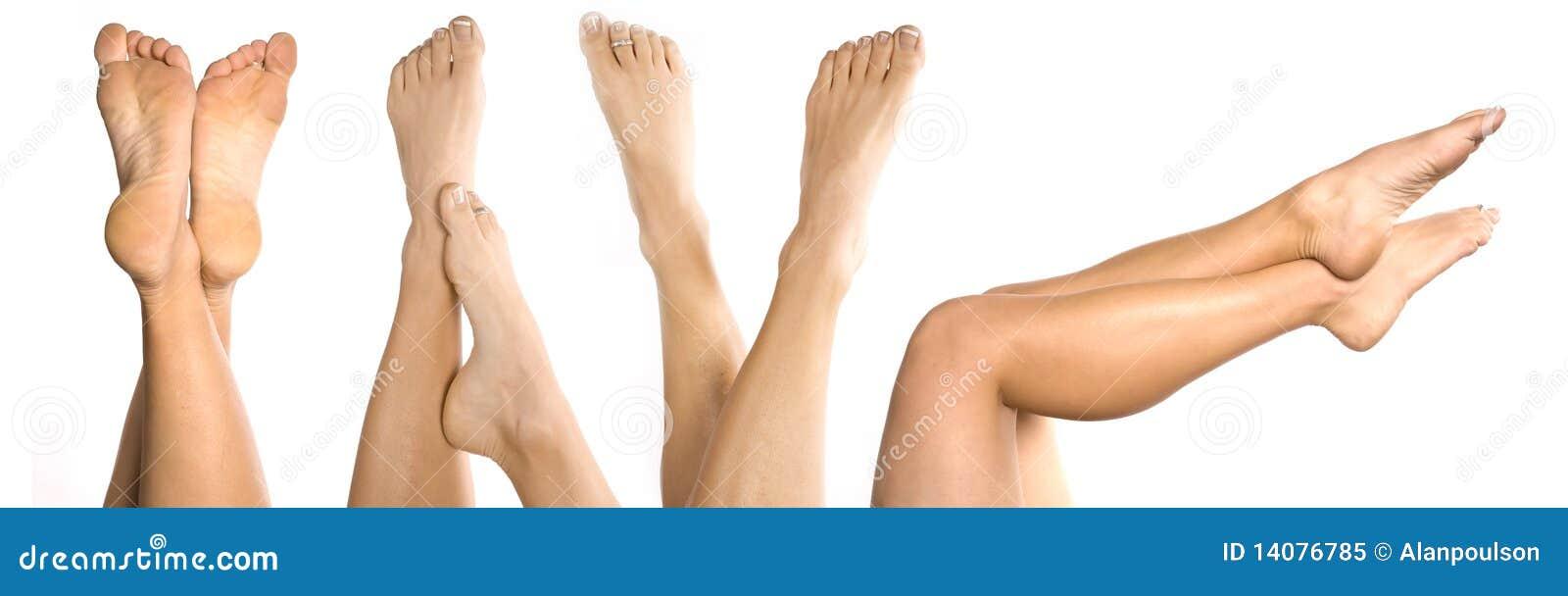 Lotes dos pés