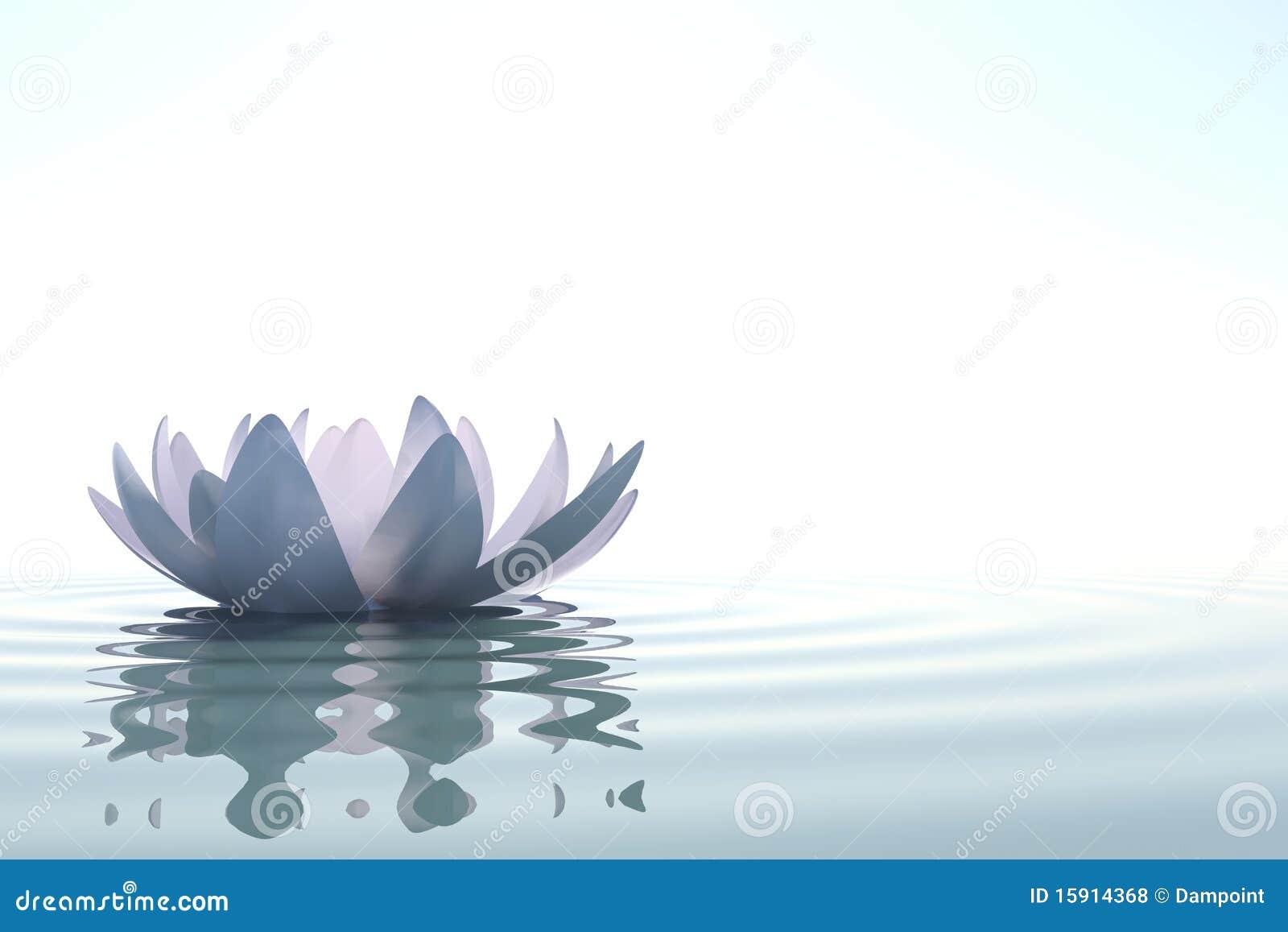 Loto de la flor del zen en agua fotos de archivo libres de for Imagenes zen
