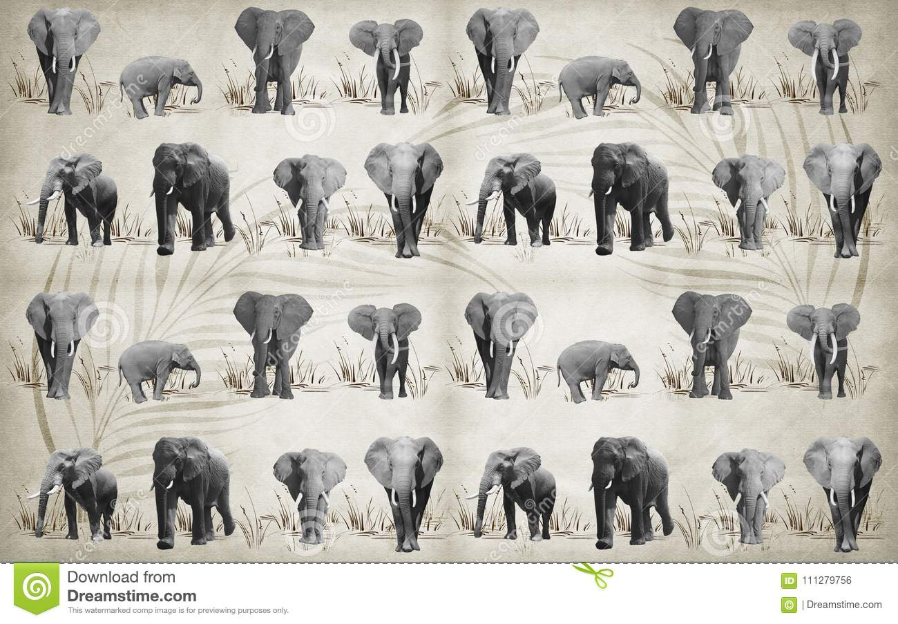 Lots Of Different Elephants For Wallpaper On Background 3D Rendering