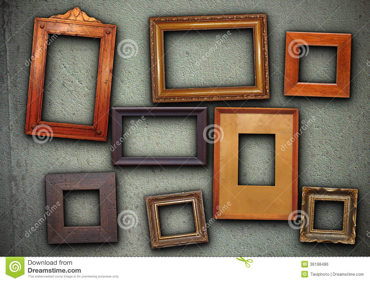 lots of picture frames hung on green wall royalty free