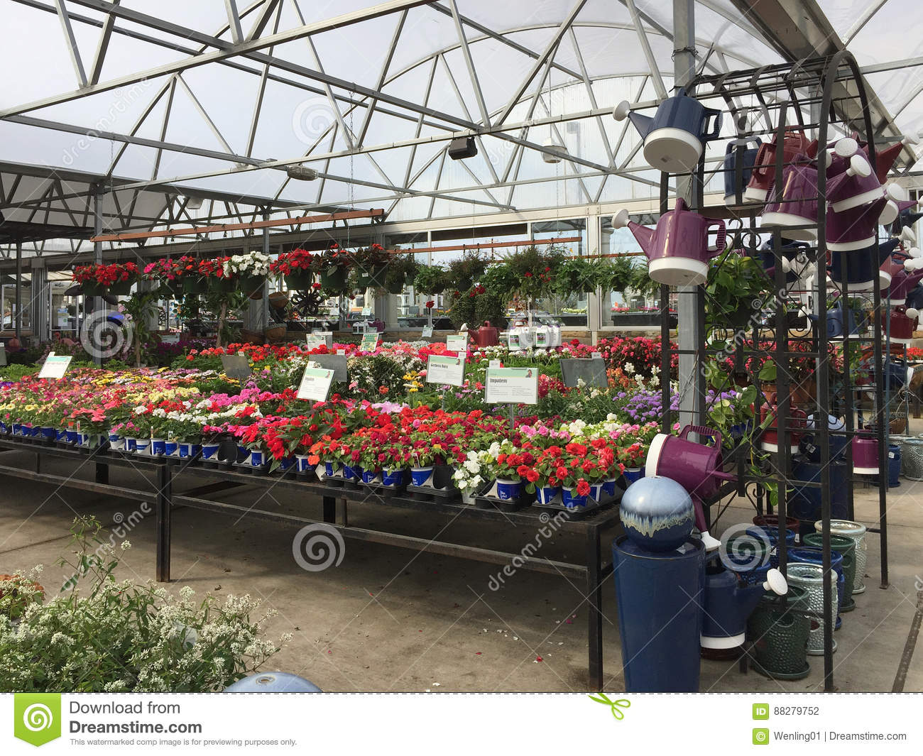 Lots Of Spring Flowers On Shelves For Sale Editorial Photography