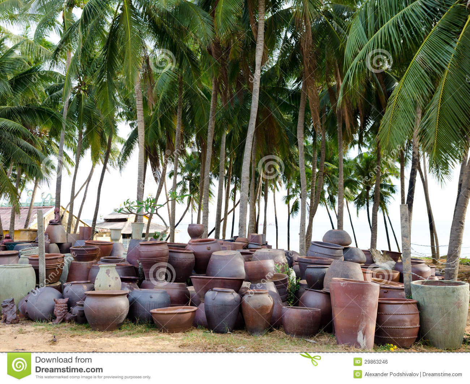 Vasi delle terraglie fotografia stock immagine di scala for Vendita palme da giardino prezzi