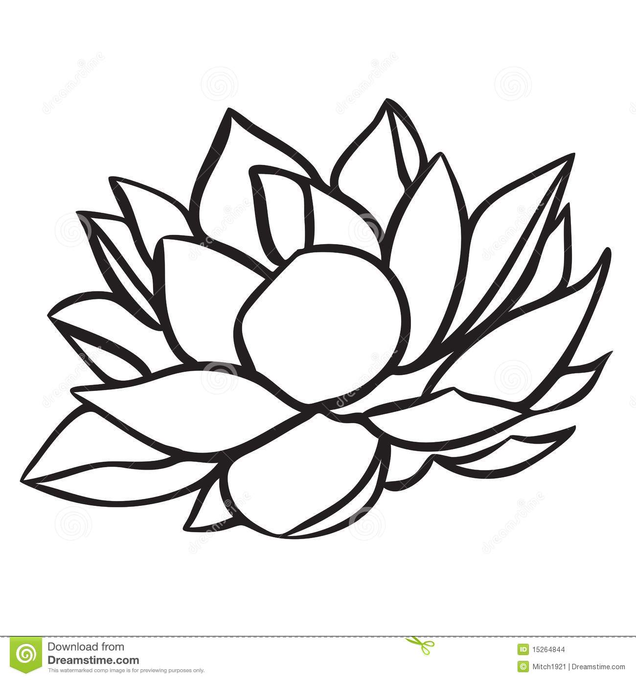 Lotus Flower Line Drawing Vector Free Download : Lotus stock vector illustration of stroke