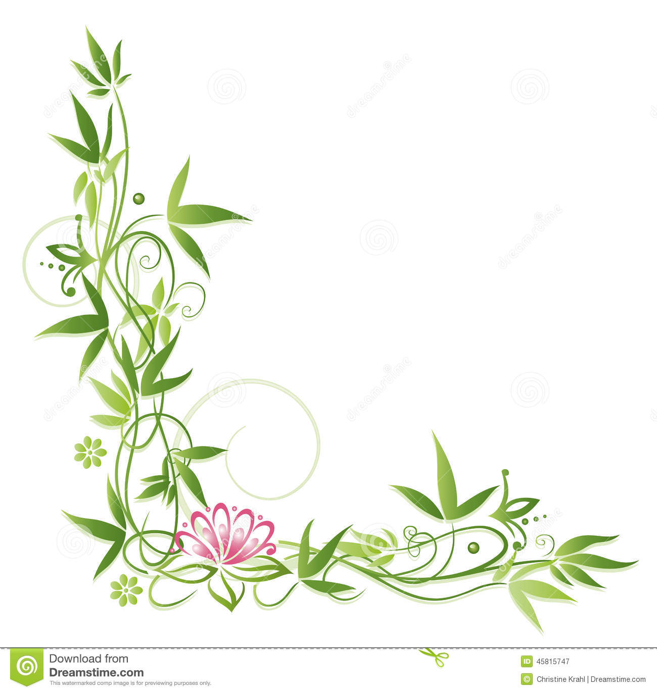 Lotus Bamboo Stock Vector Illustration Of Blossoming 45815747
