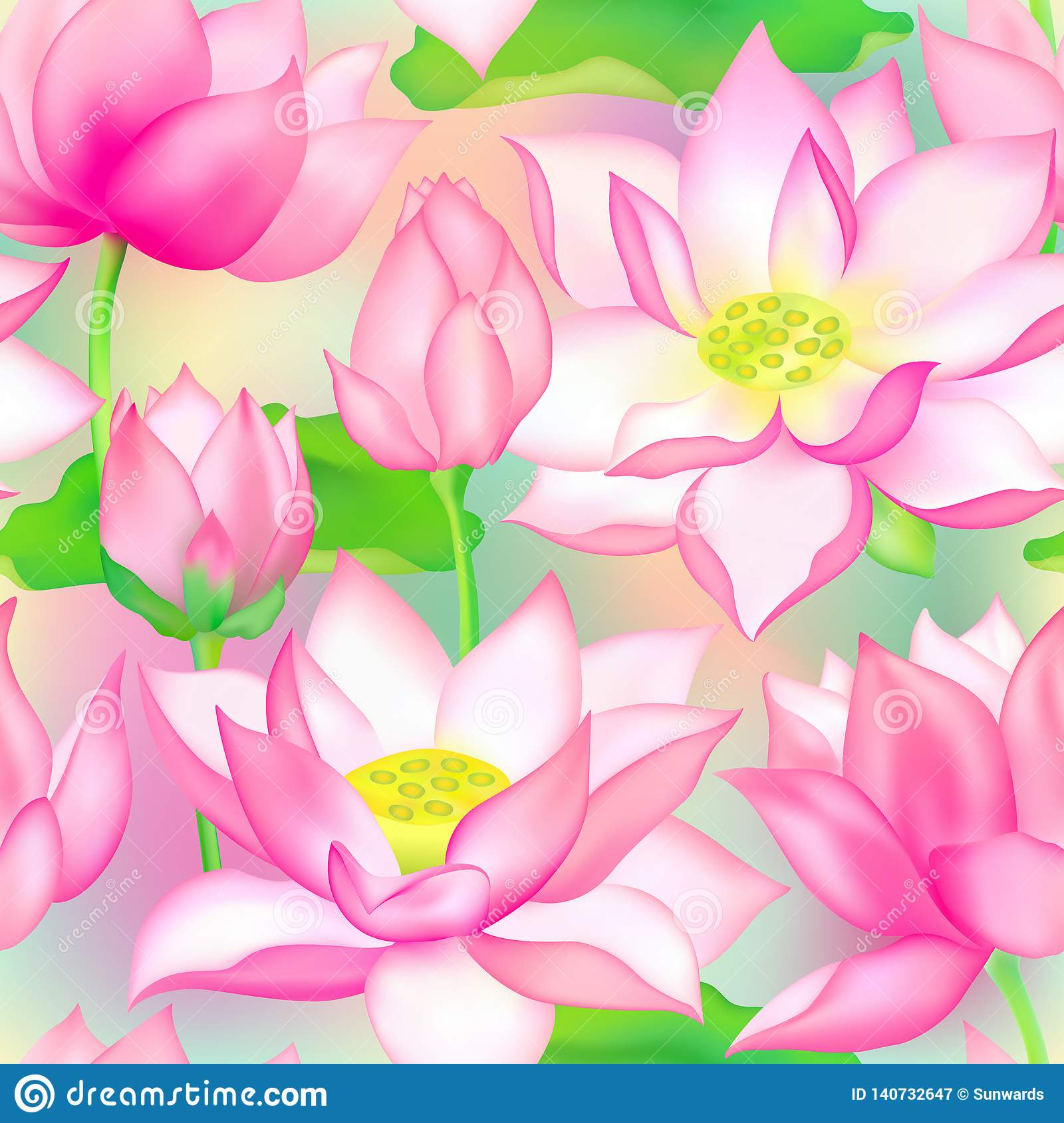 Lotus Buds And Flowers Seamless Vector Pattern Water Lilly Nelumbo