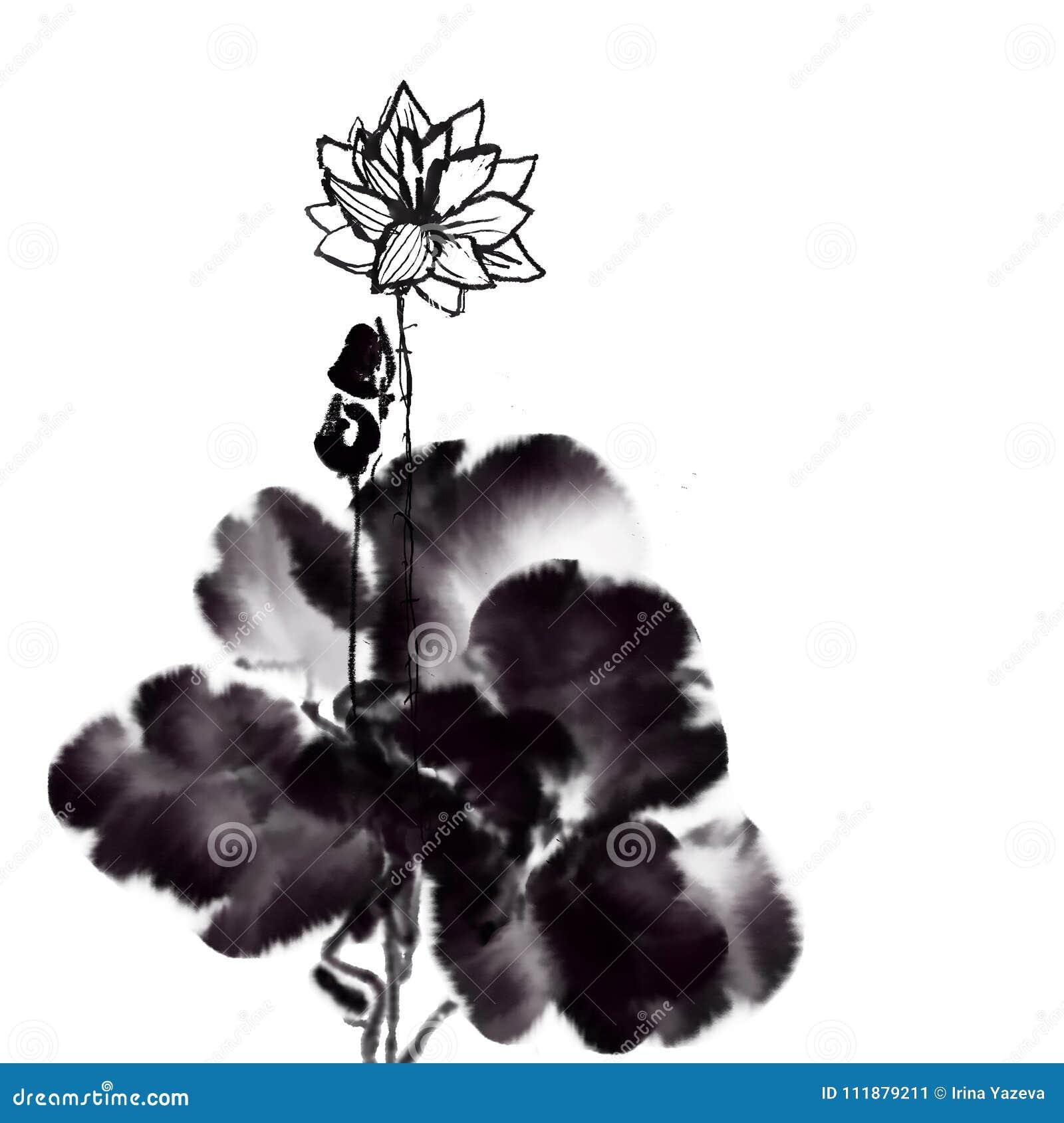 Lotus China Ink Brush Painting Stock Illustration Illustration Of