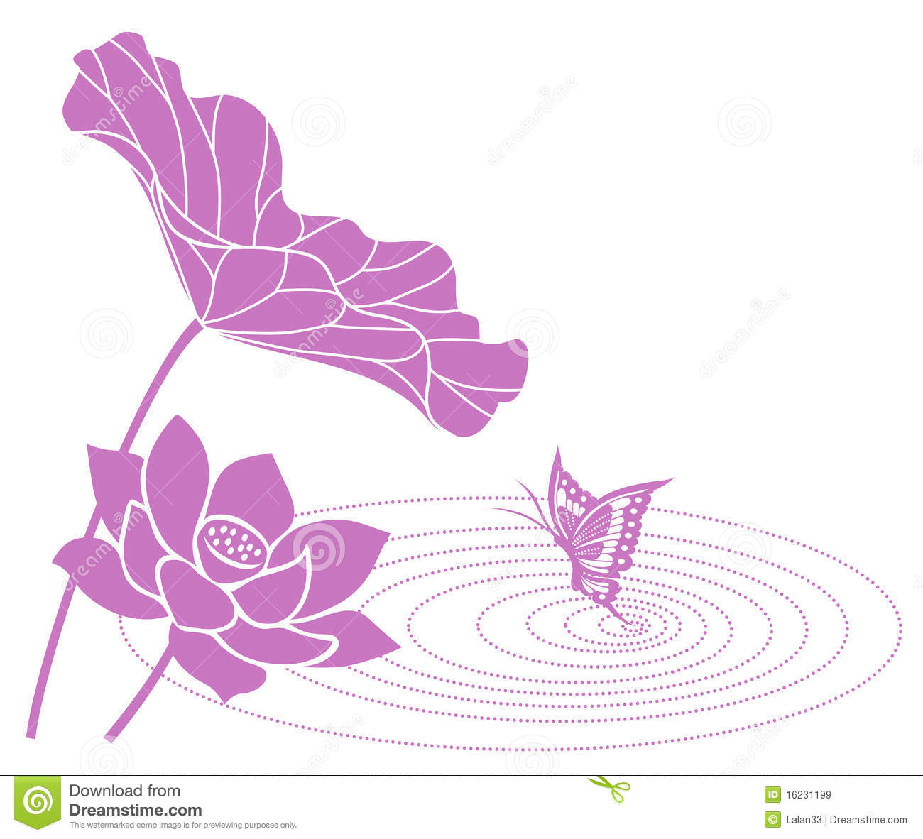 Lotus Flower Stock Vector Illustration Of Asia Flower 16231199