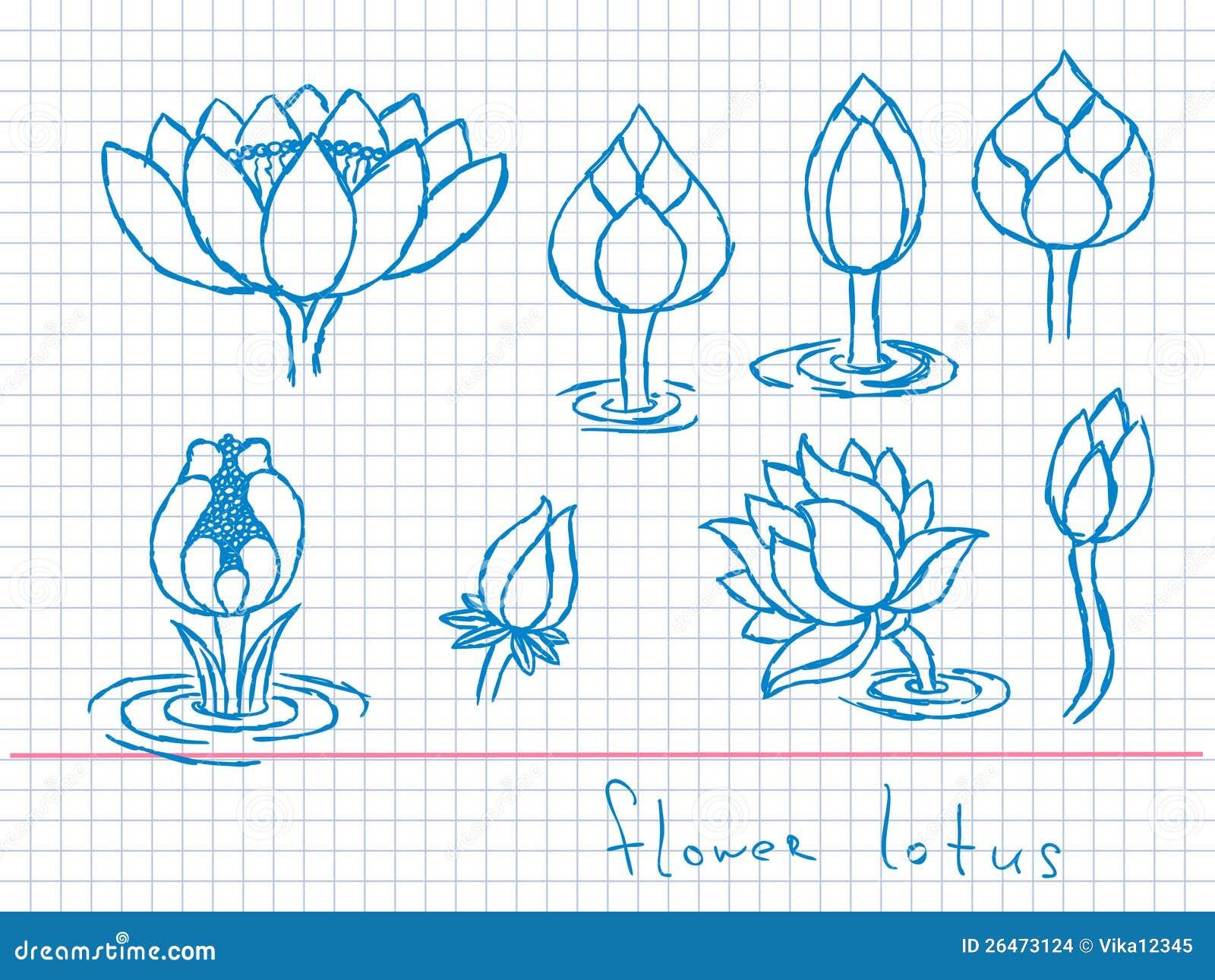 Lotus Flower Graffiti