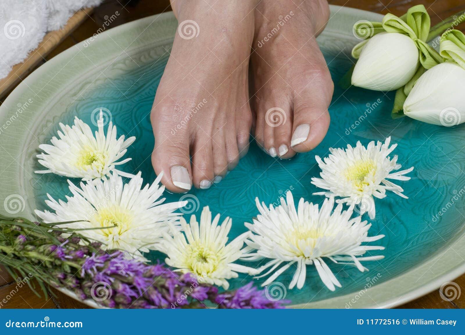 Lotus flower aromatherapy spa for feet stock photo image of download lotus flower aromatherapy spa for feet stock photo image of massage feet mightylinksfo
