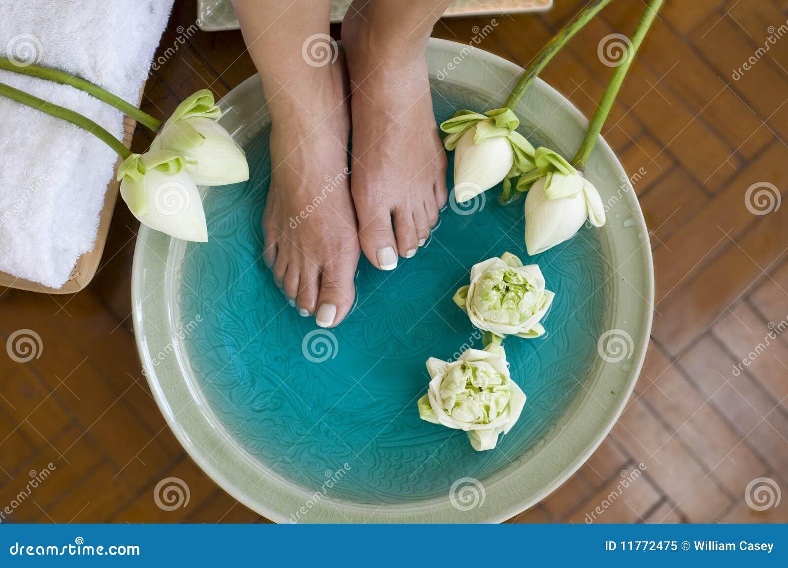Lotus flower aromatherapy spa for feet 2 stock image image of lotus flower aromatherapy spa for feet 2 mightylinksfo