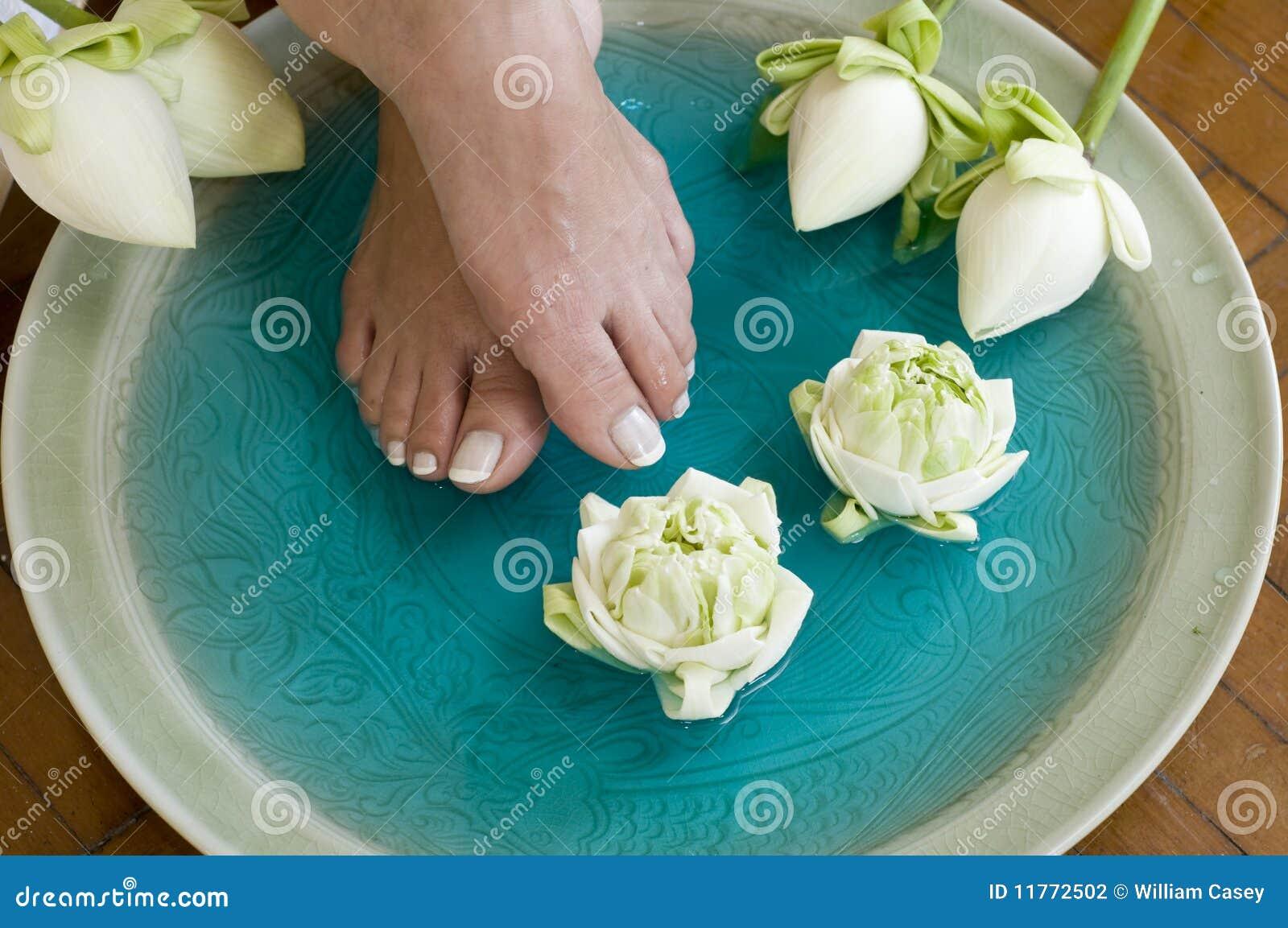 Lotus Flower Aromatherapy Spa For Feet 4 Stock Photo Image Of