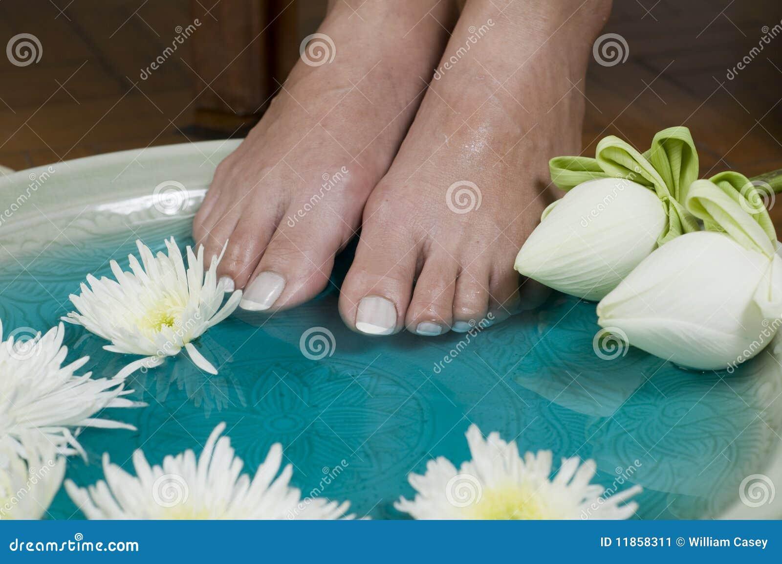 Lotus flower aromatherapy spa for feet 5 stock image image of lotus flower aromatherapy spa for feet 5 mightylinksfo