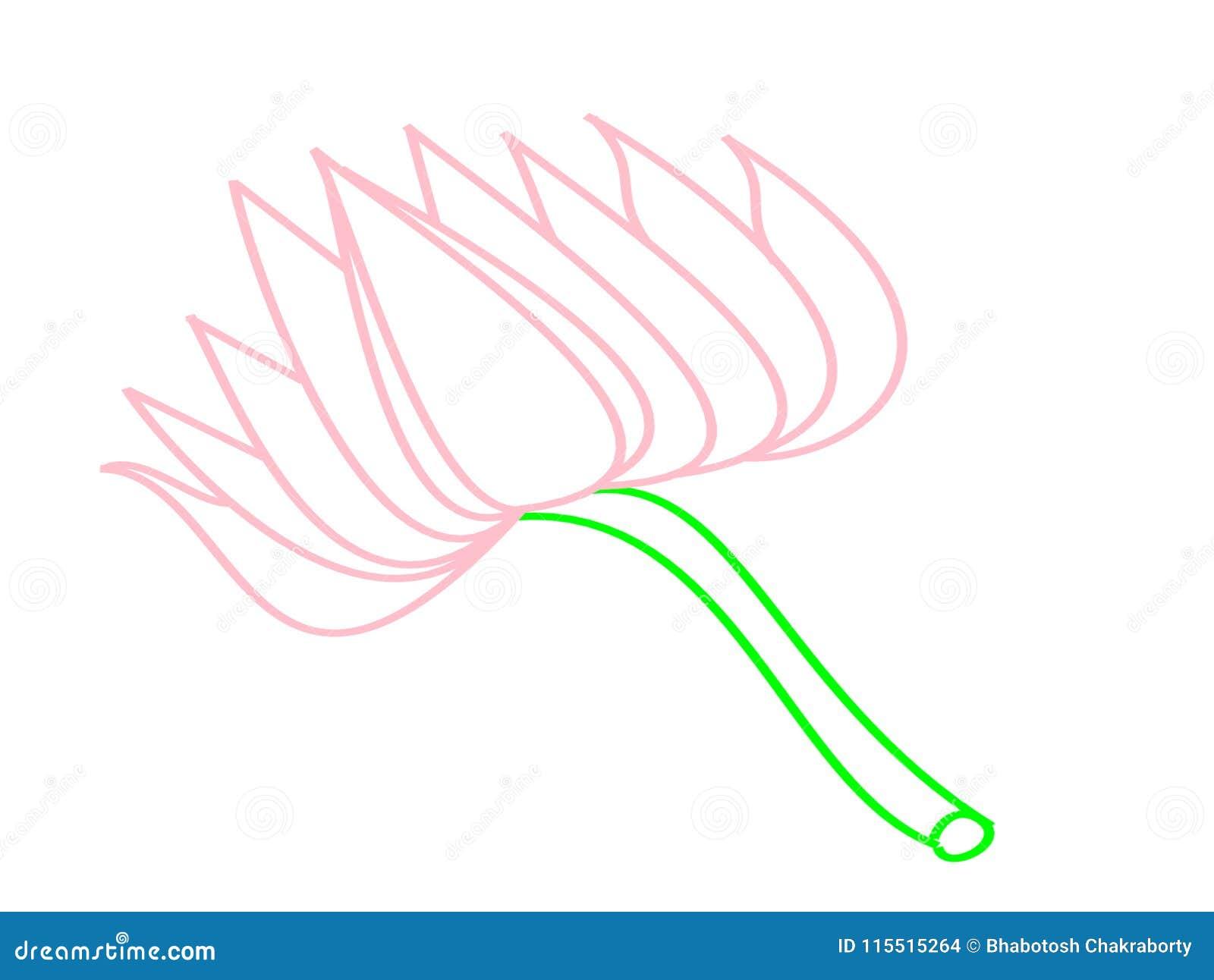 Lotus Flower For Art Book Stock Photo Illustration Of Un 115515264