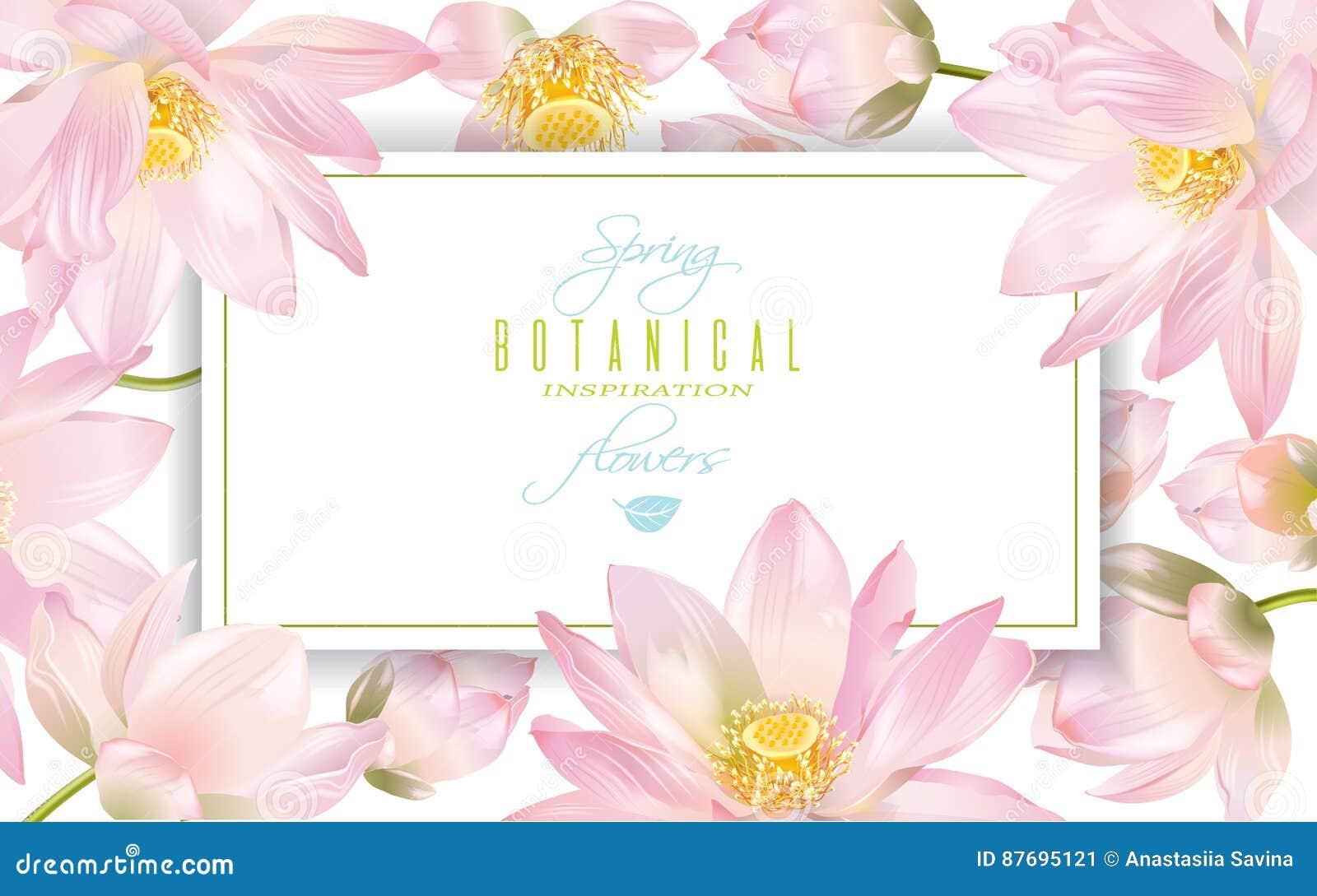 Lotus Flower Banner Stock Vector Illustration Of Healing 87695121