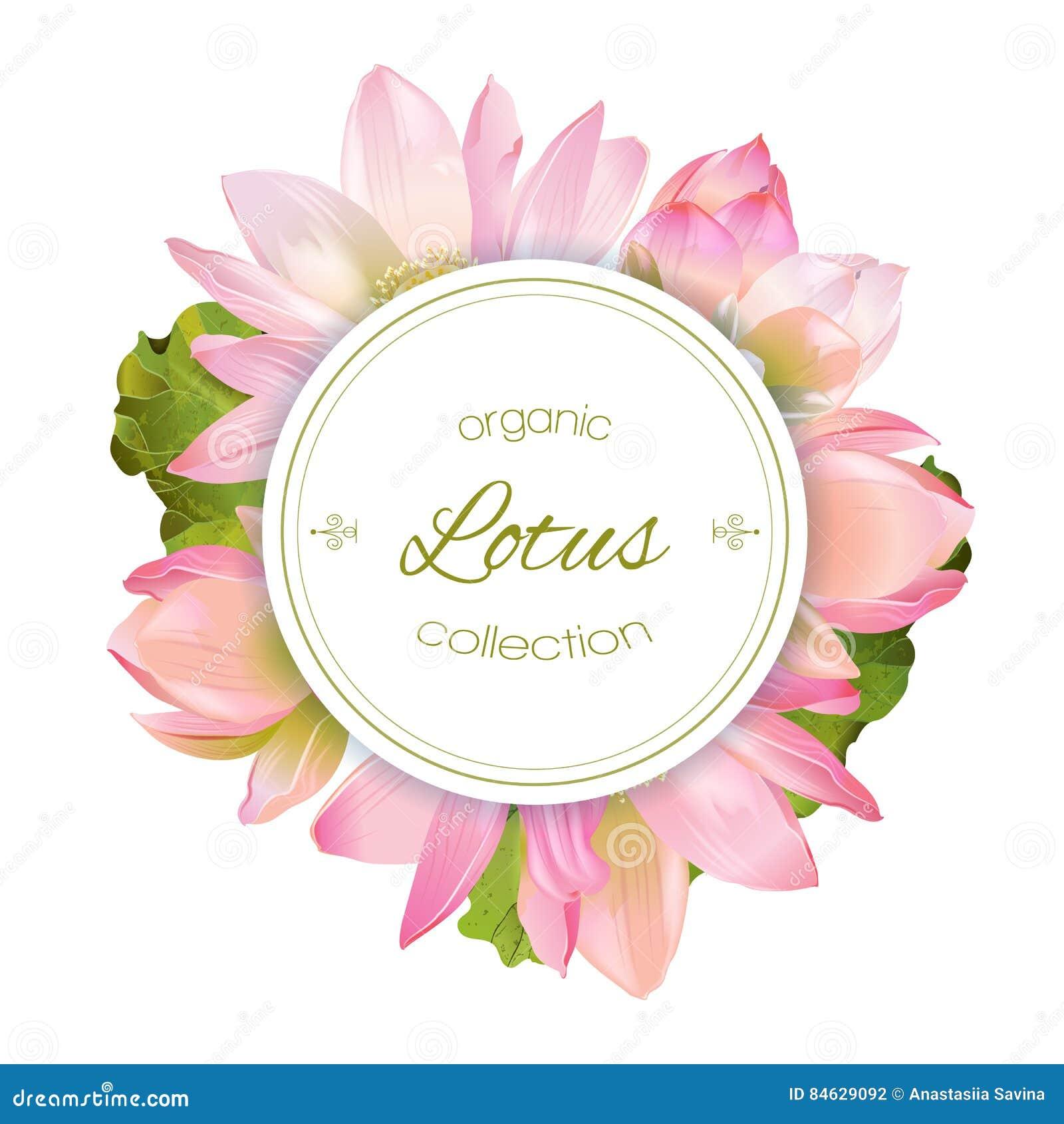 Lotus flower banner stock vector image 84629092 lotus flower banner dhlflorist Gallery