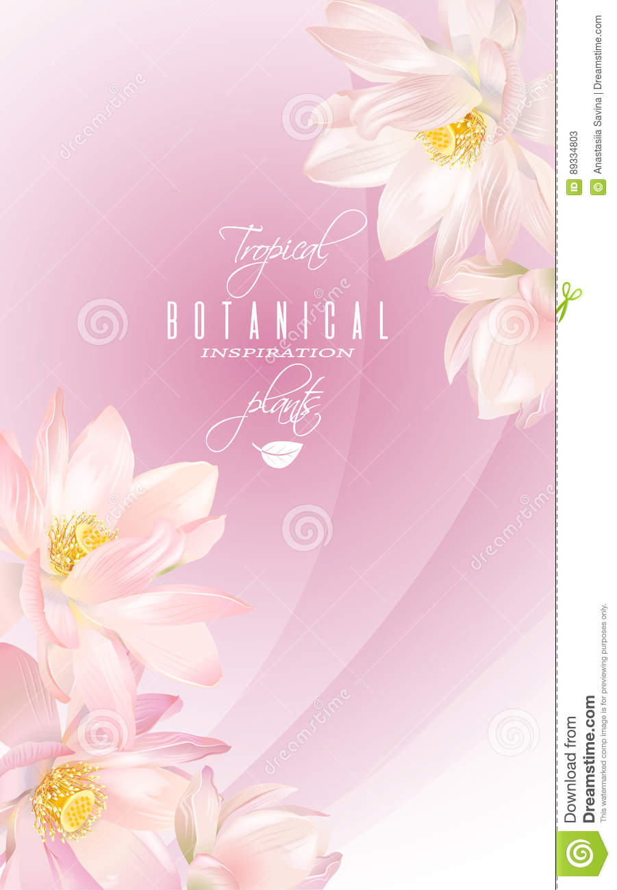 Lotus Flower Banner Stock Vector Illustration Of Frame 89334803