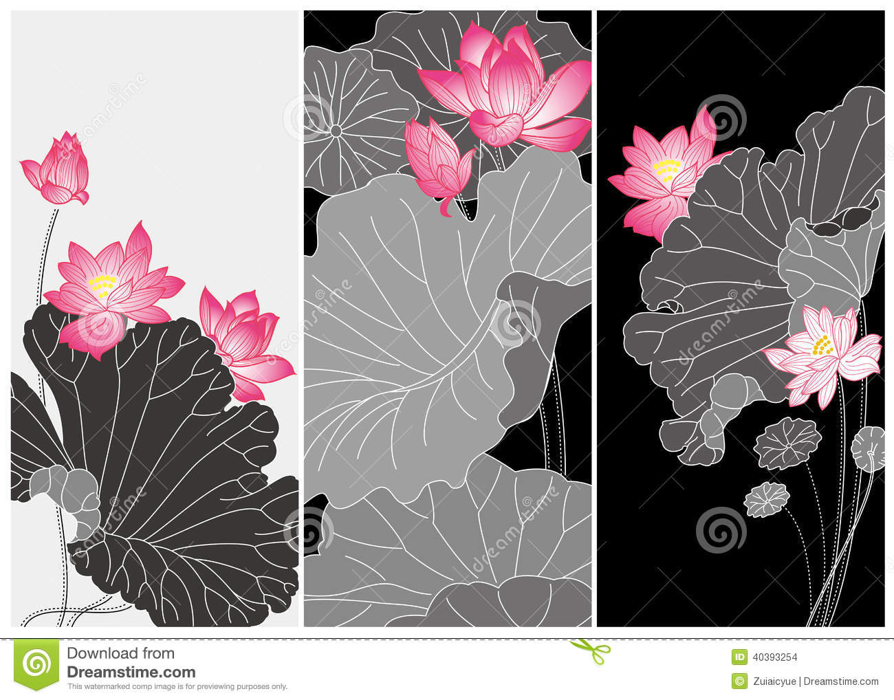 Chinese Flower Line Drawing : Lotus flower card stock vector image