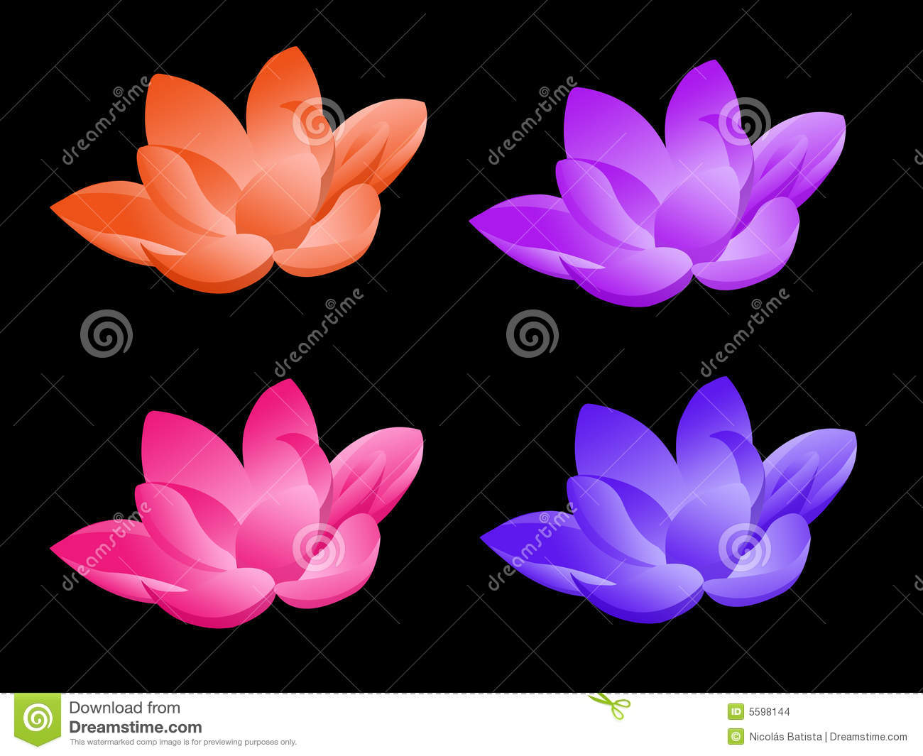 Lotus Flower In Four Colors Stock Illustration Illustration Of