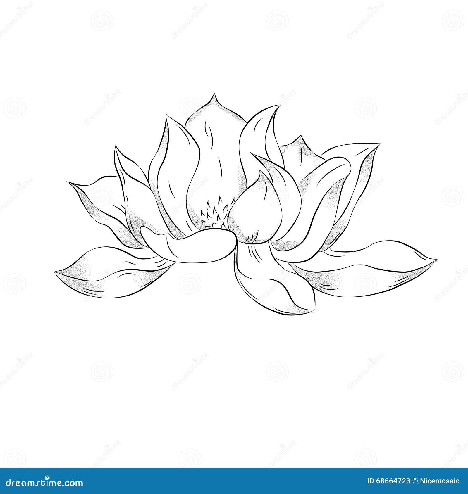 Lotus flower hand drawn illustration with stipple effect vinta lotus flower hand drawn illustration with stipple effect vinta mightylinksfo