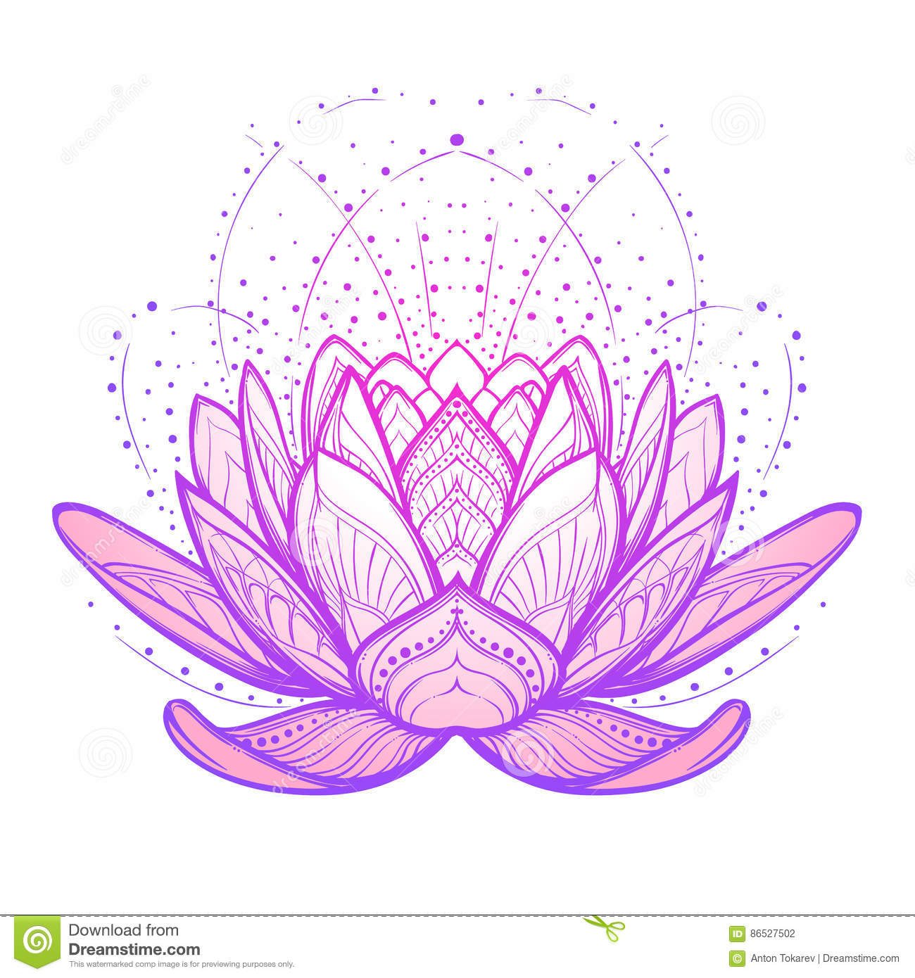 Lotus Flower Intricate Stylized Linear Drawing On White Background