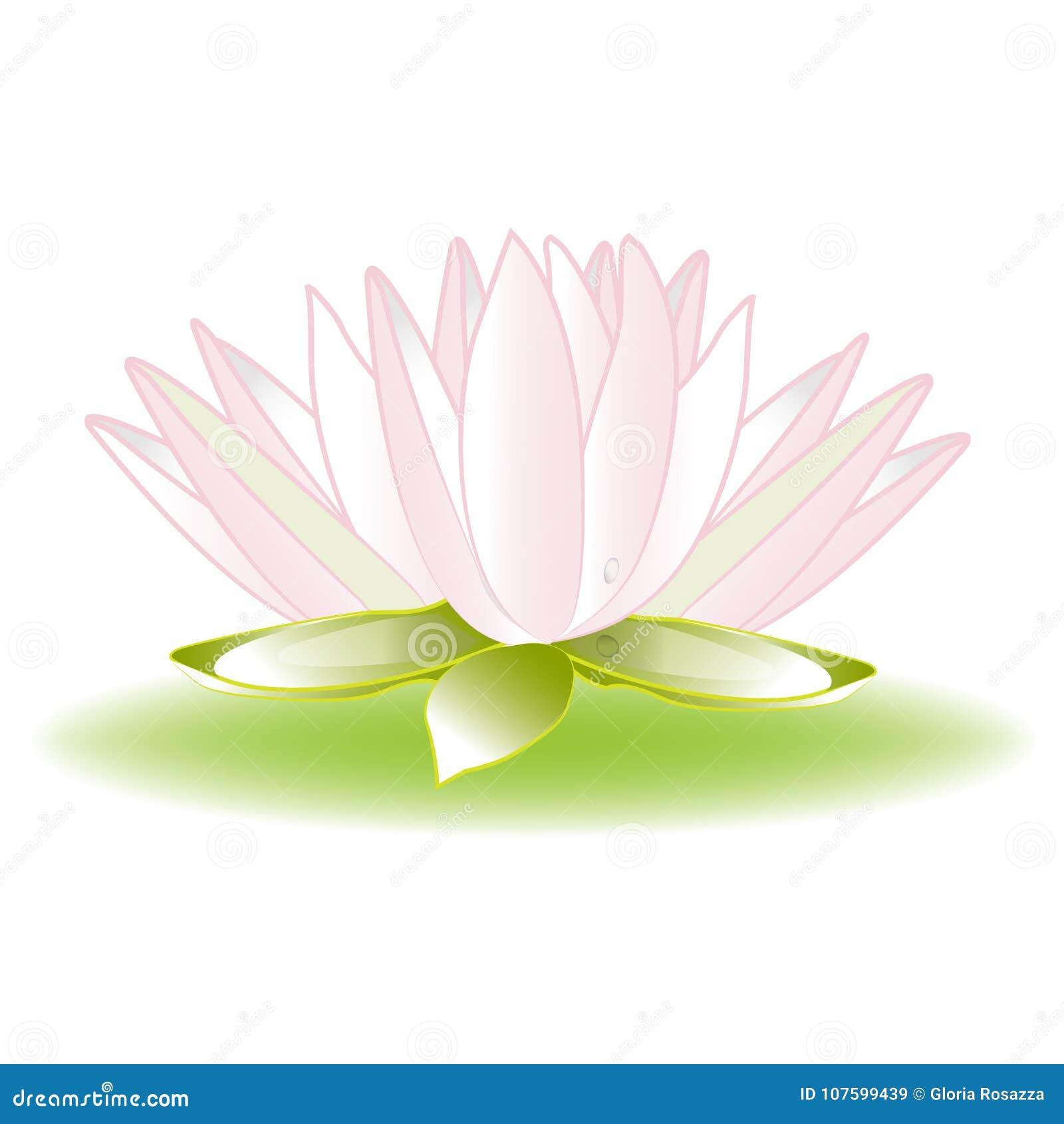 Lotus Flower Logo Image Icon Template Stock Illustration
