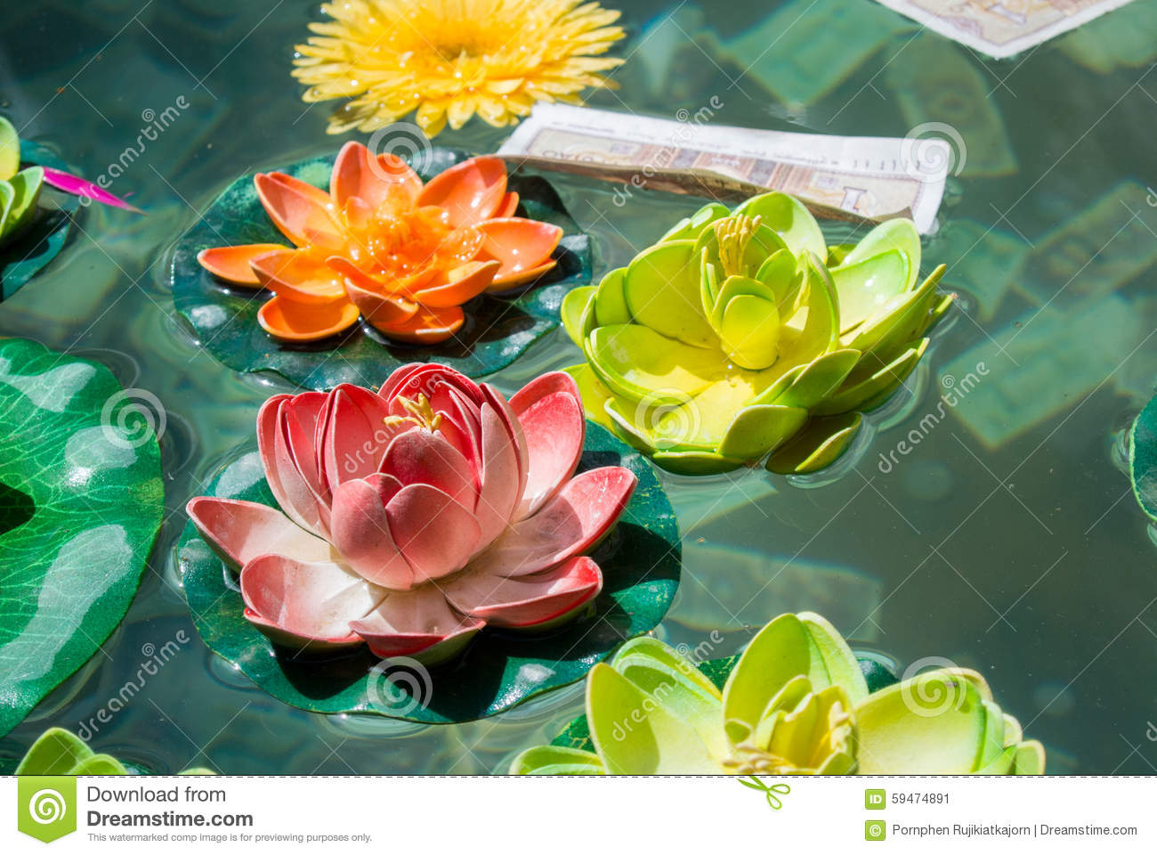 Lotus flower in a pond at the chinese temple stock image image of download lotus flower in a pond at the chinese temple stock image image of beautiful izmirmasajfo