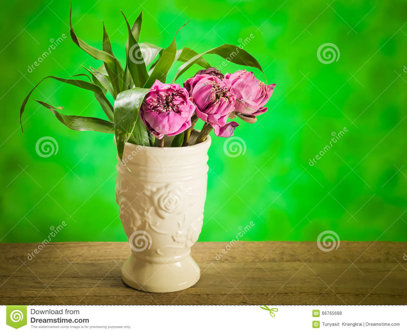 Lotus Flower In A Vase Steel Life Stock Photo Image Of Vase Lilly