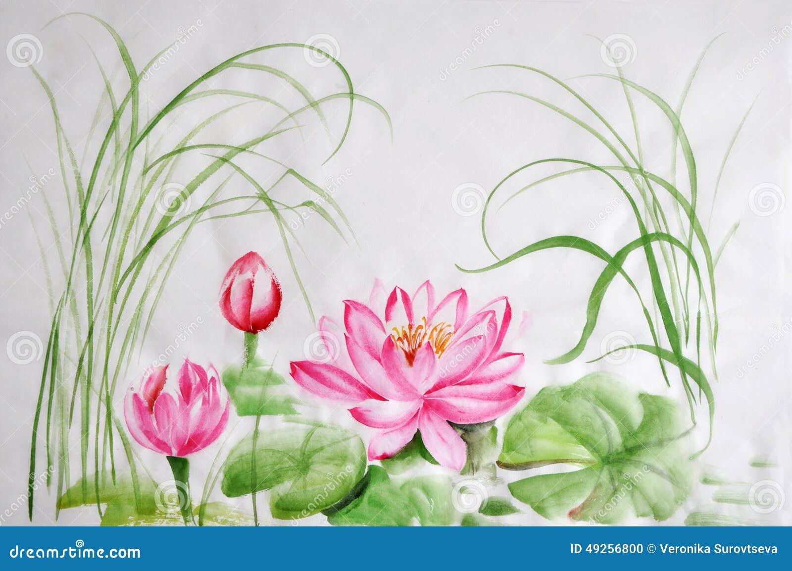Lotus Flower Watercolor Painting Stock Illustration Illustration