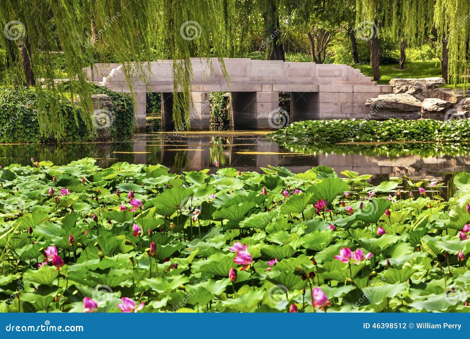 Lotus garden chinese garden ftempo for Western state bank garden city
