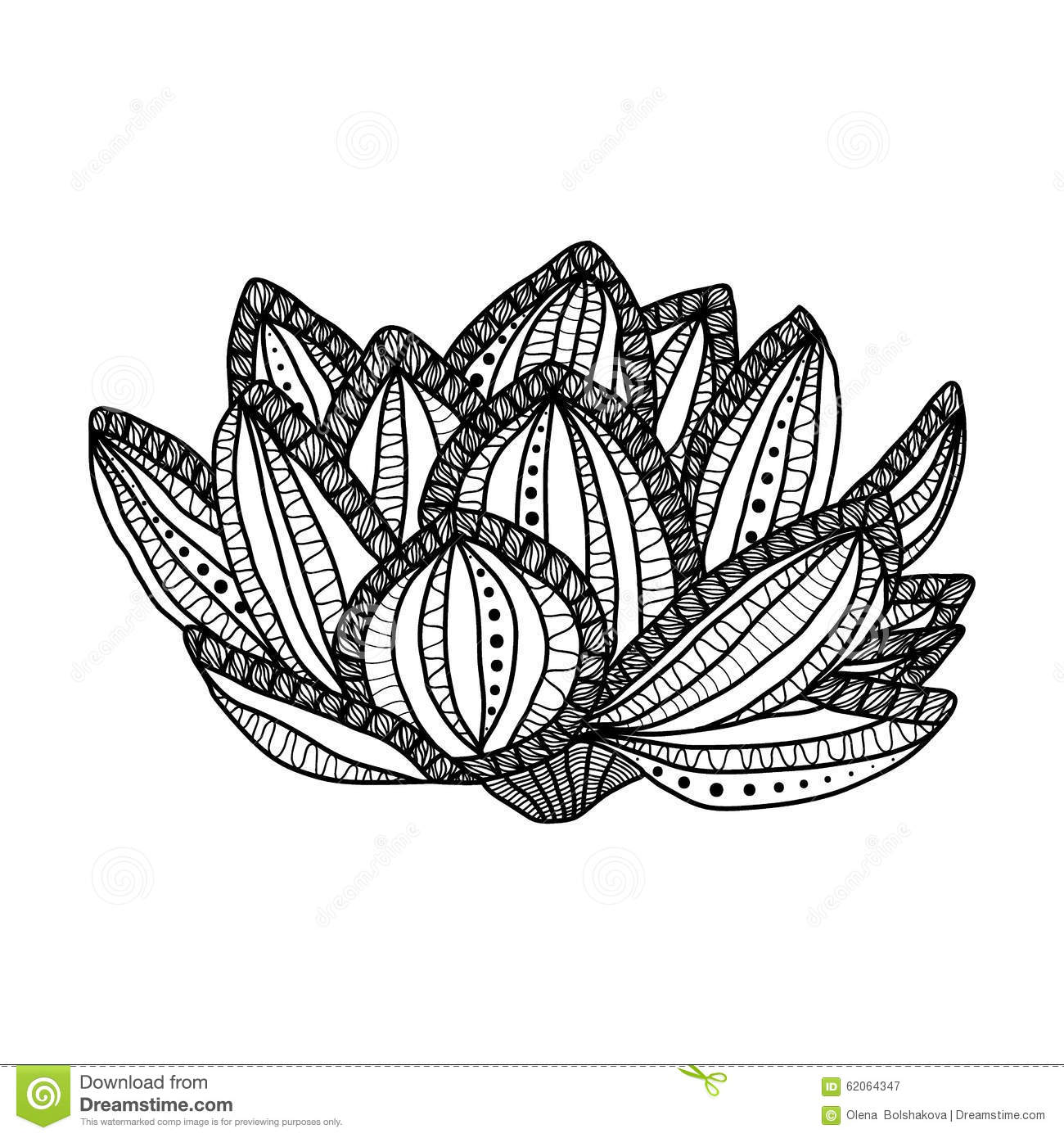 lotus hand drawn magic flower anti stress stock vector image