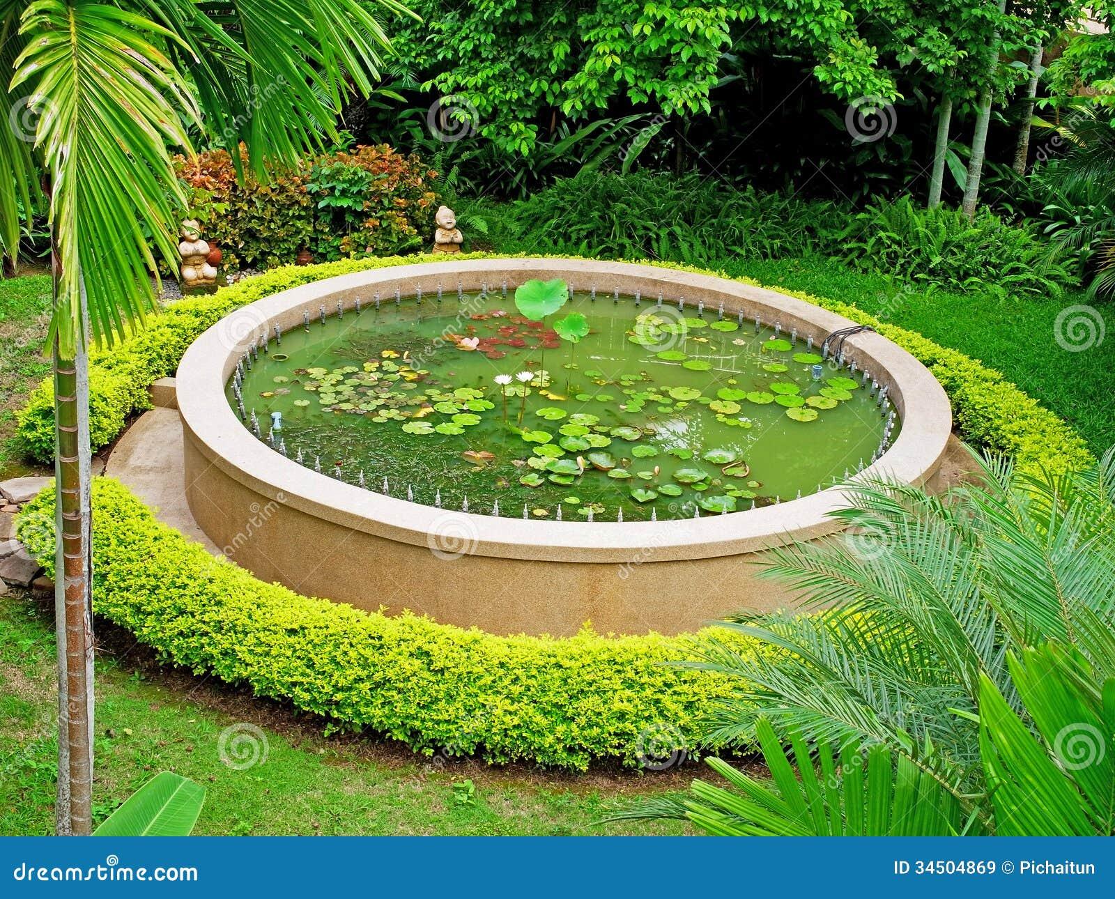 Lotus Pond Royalty Free Stock Images Image 34504869