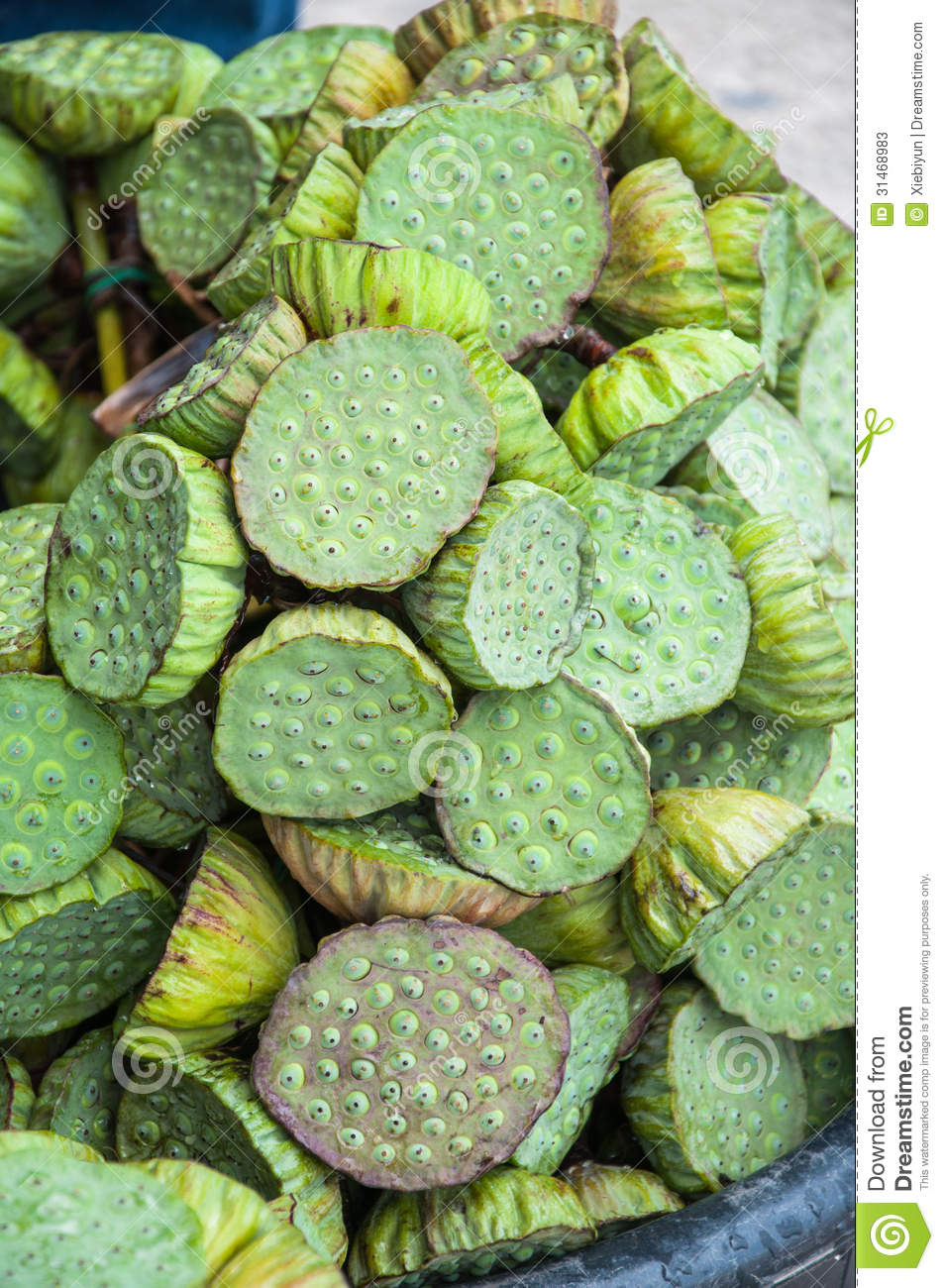 Lotus Seed Pods At Street Market In Thailand Stock Image Image Of