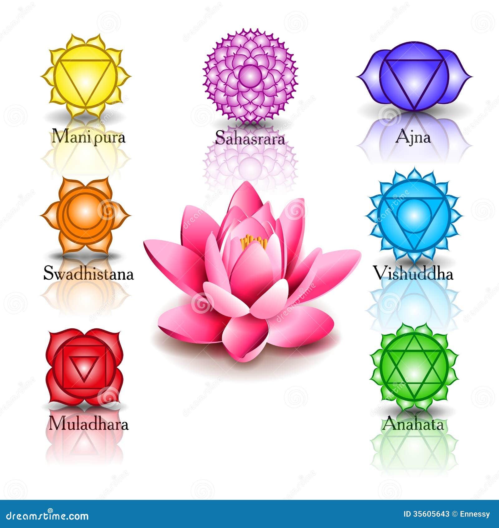 Lotus And Seven Chakras Stock Photos - Image: 35605643