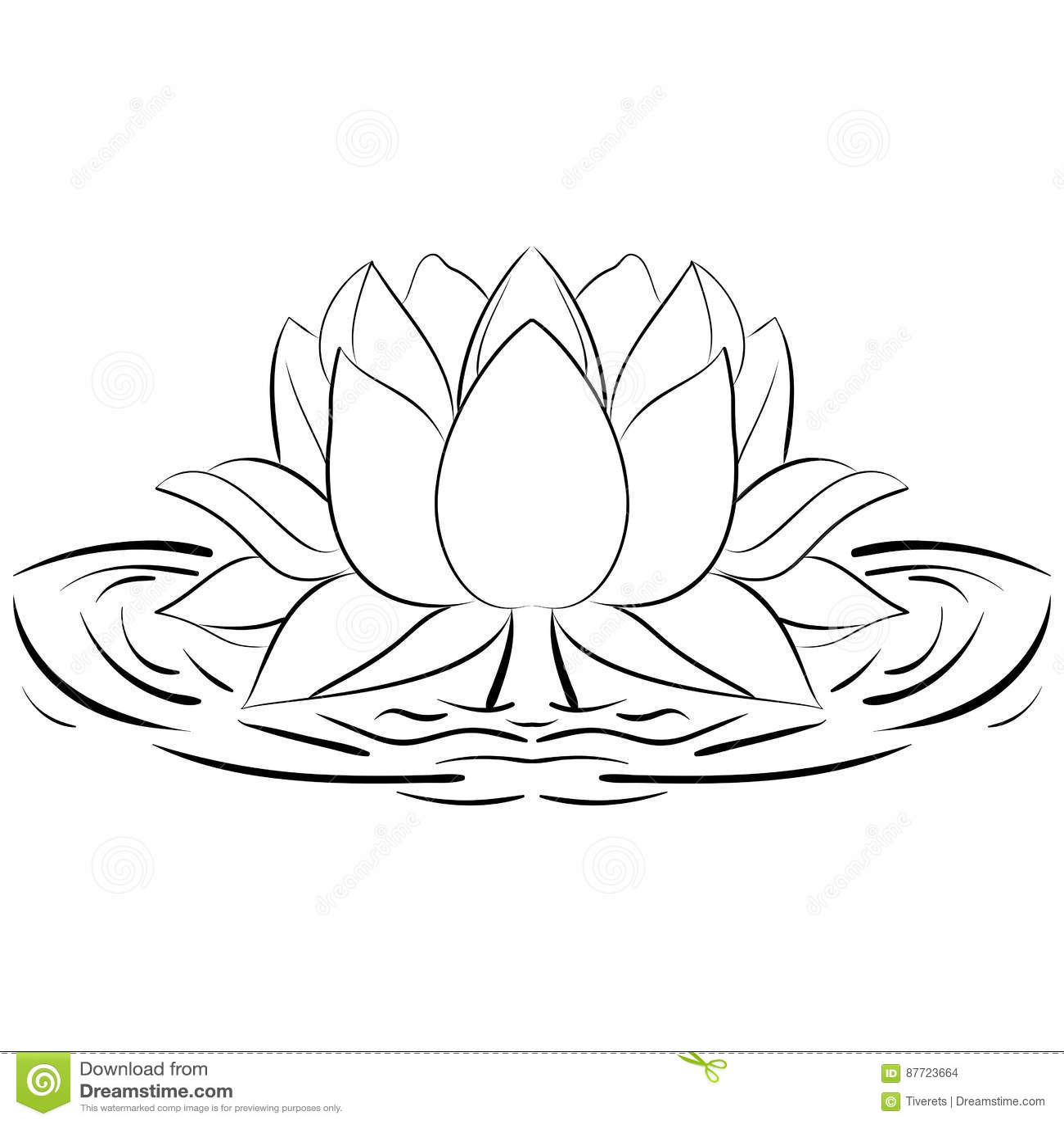 Lotus Sketch Flower Design Elements Illustration Stock Vector