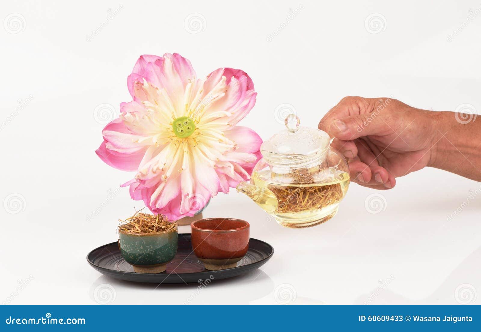 Lotus Stamen Tea Stock Photo Image 60609433