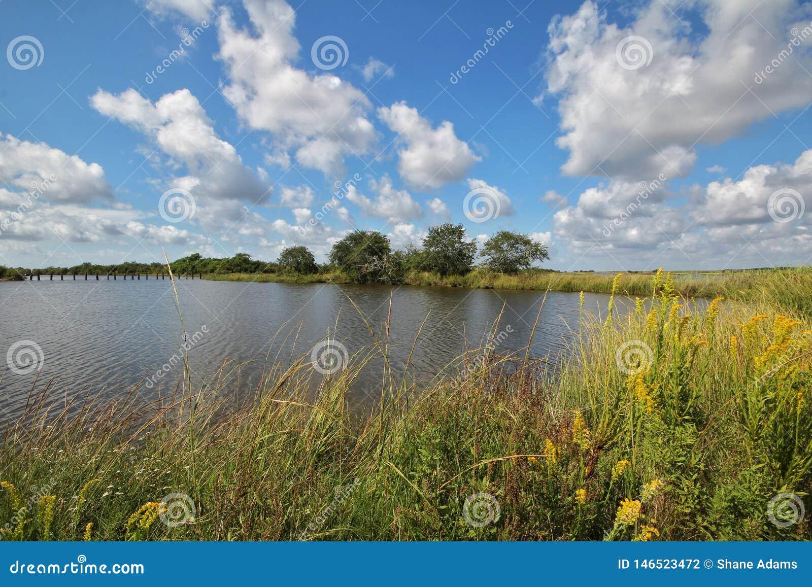 Louisiana-Bayou-Sumpfgebiete