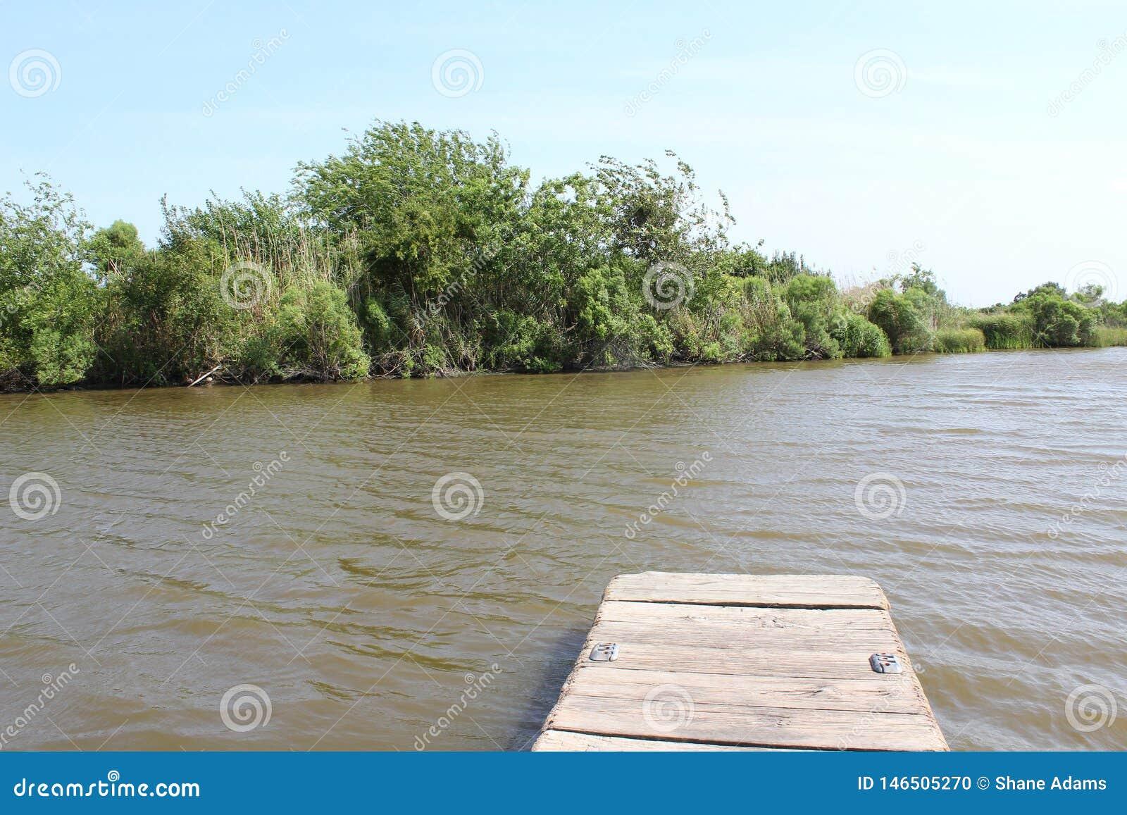 Louisiana-Bayou-Szene