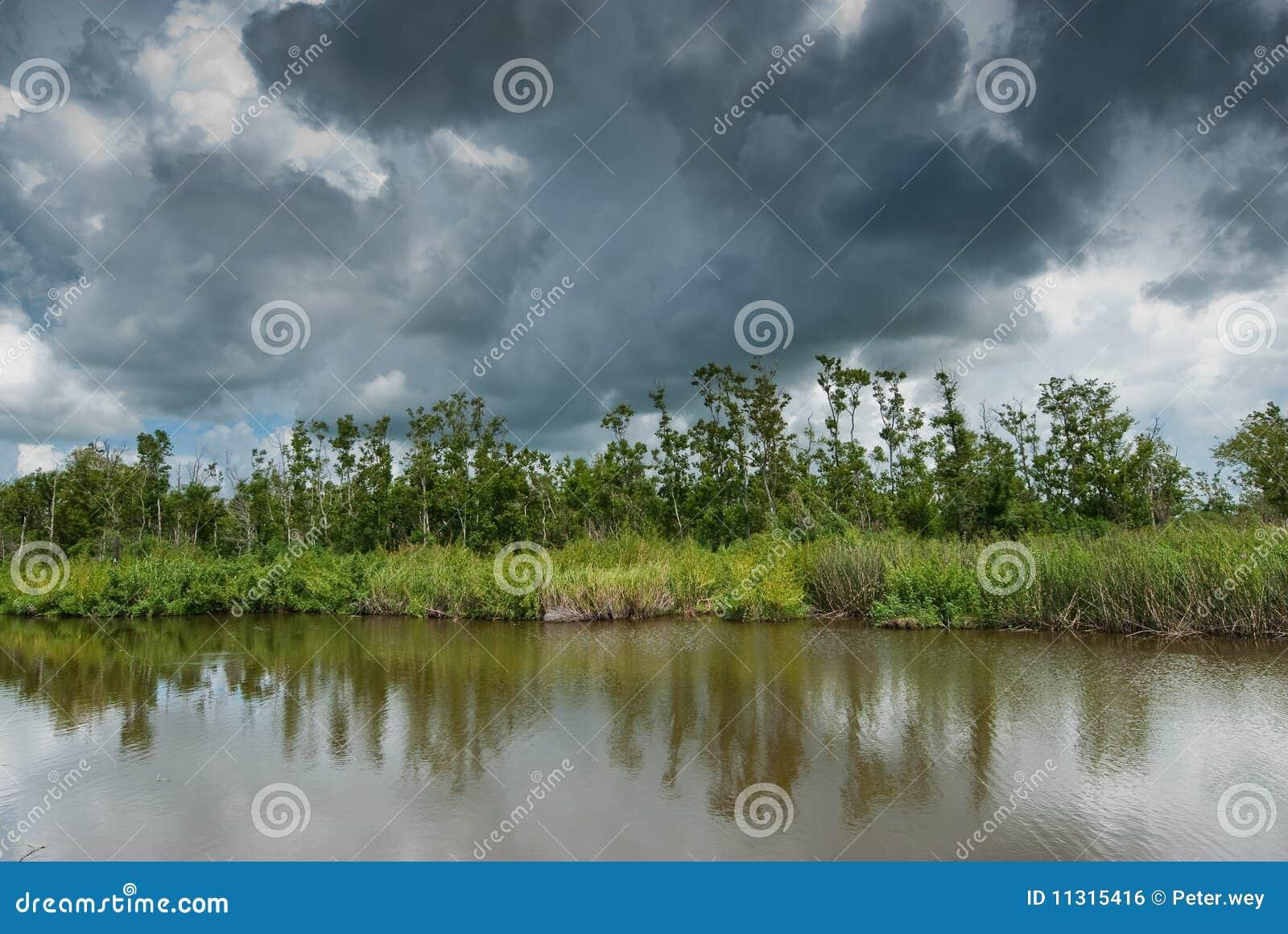 Louisiana-Sümpfe