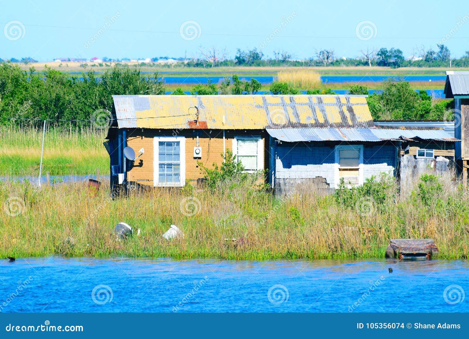Louisiana-sumpfiger Flussarm