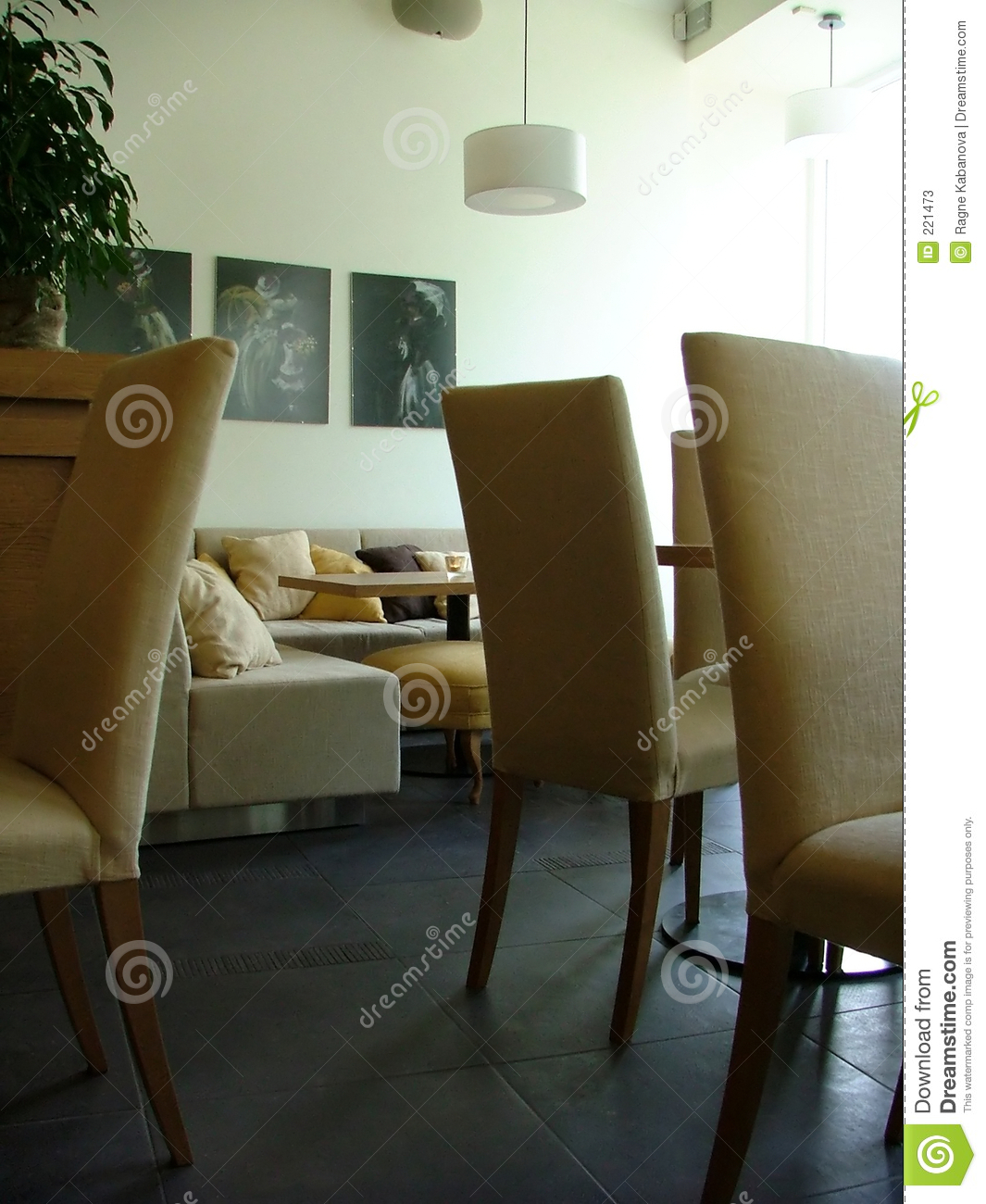 Lounge Interior Stock Photos Image 221473
