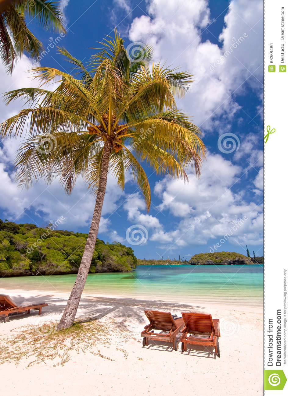 Loungers under a palm tree on a tropical beach