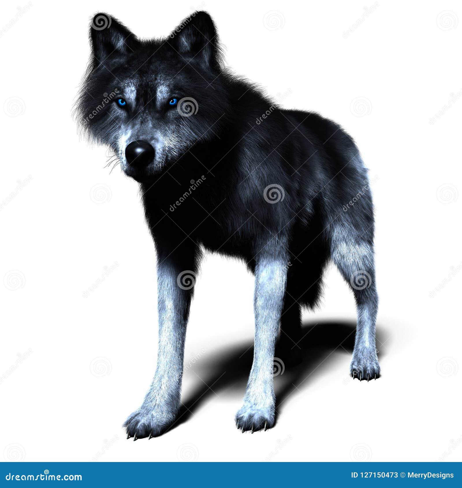 Loup 3d Dans La Pose Debout Illustration Stock Illustration Du Dans Loup 127150473