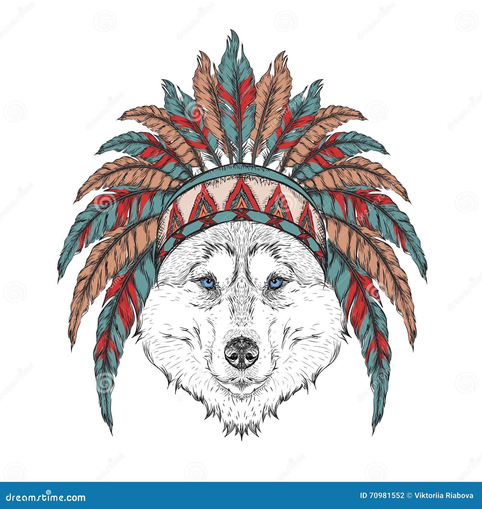 Loup Dans Le Gardon Indien Coiffe Indienne De Plume D Aigle