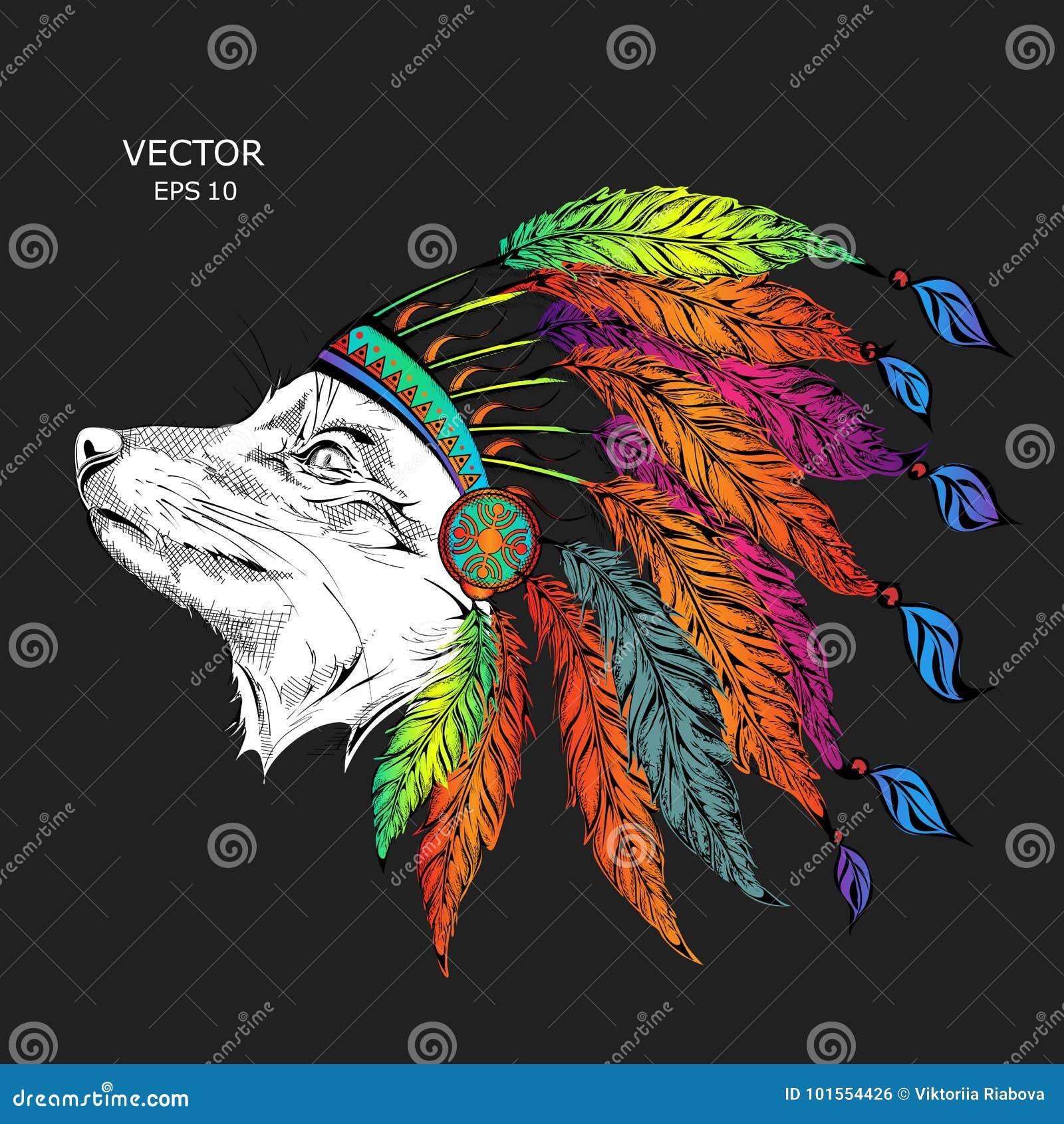 Loup Dans Le Gardon Indien Colore Coiffe Indienne De Plume D Aigle