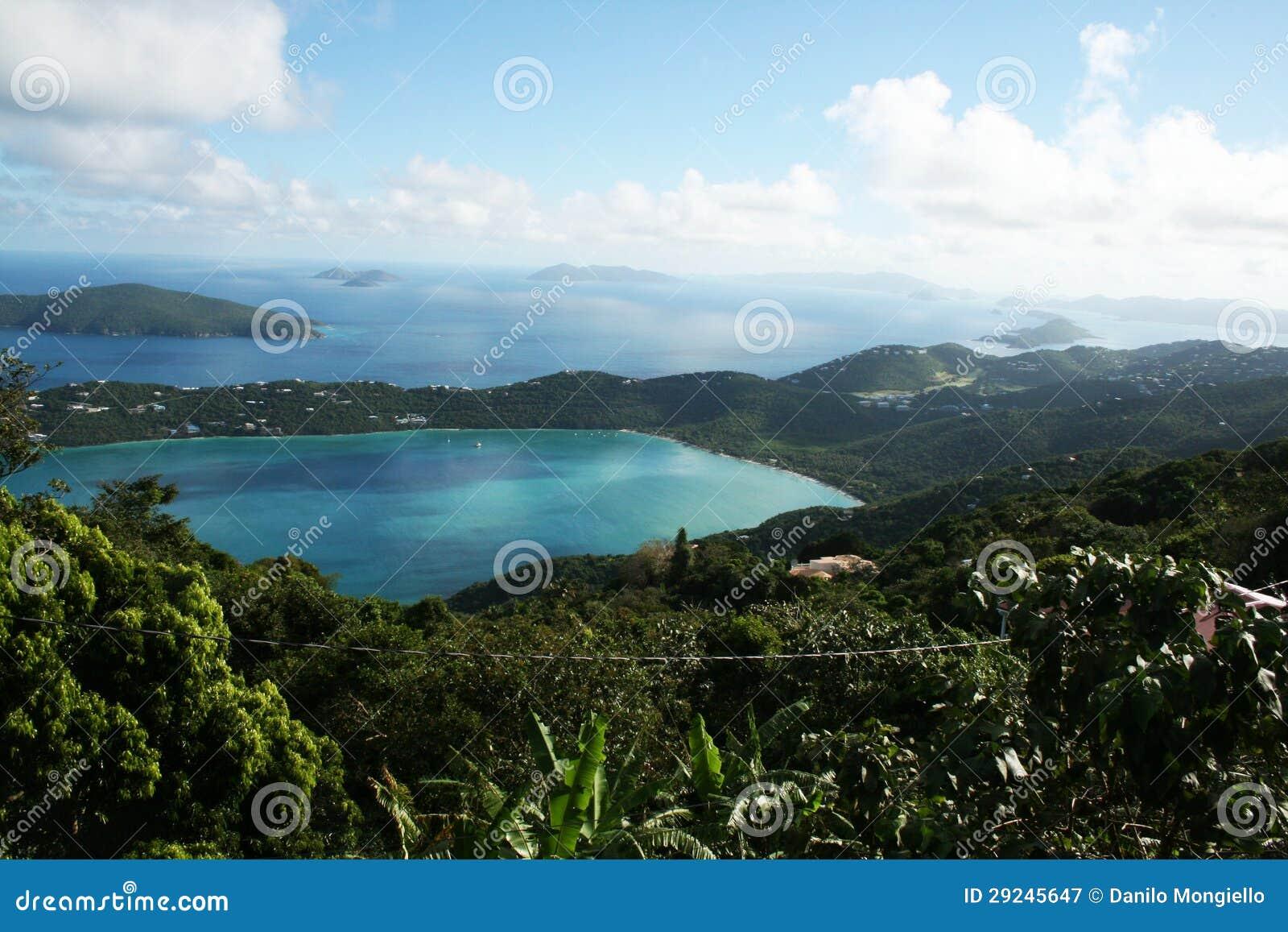 Download Louro de Magens imagem de stock. Imagem de feriado, tropical - 29245647